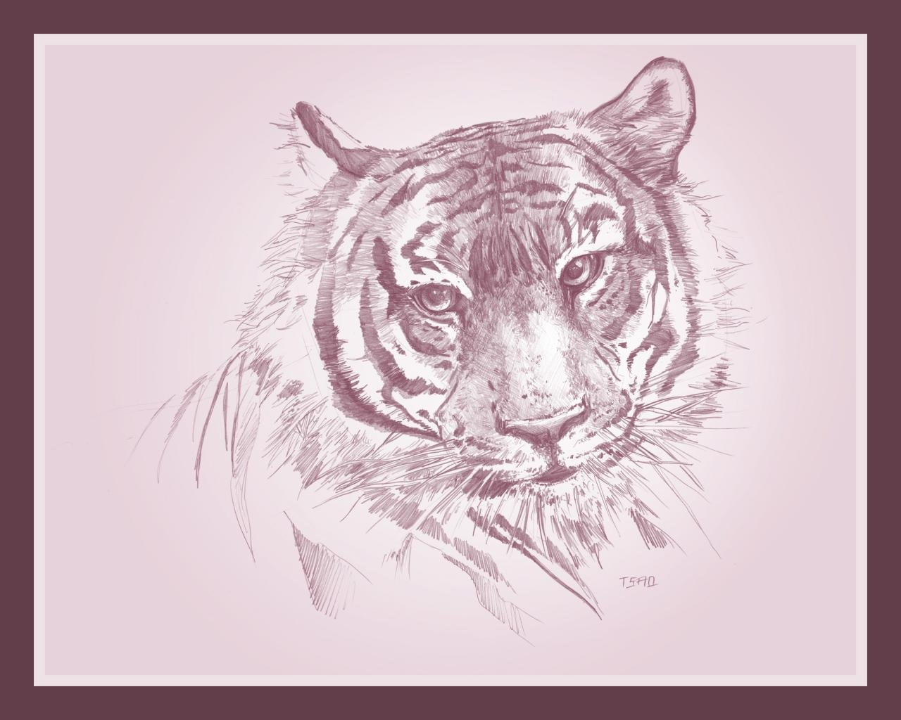 Awesome Tiger free background ID:116074 for hd 1280x1024 PC