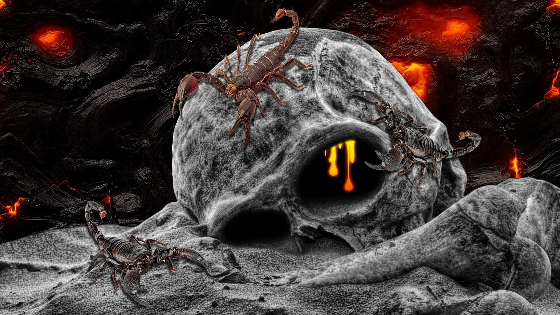 Awesome Skull Wallpapers Wallpapers Browse: Skull Wallpapers 1920x1080 Full HD (1080p) Desktop Backgrounds