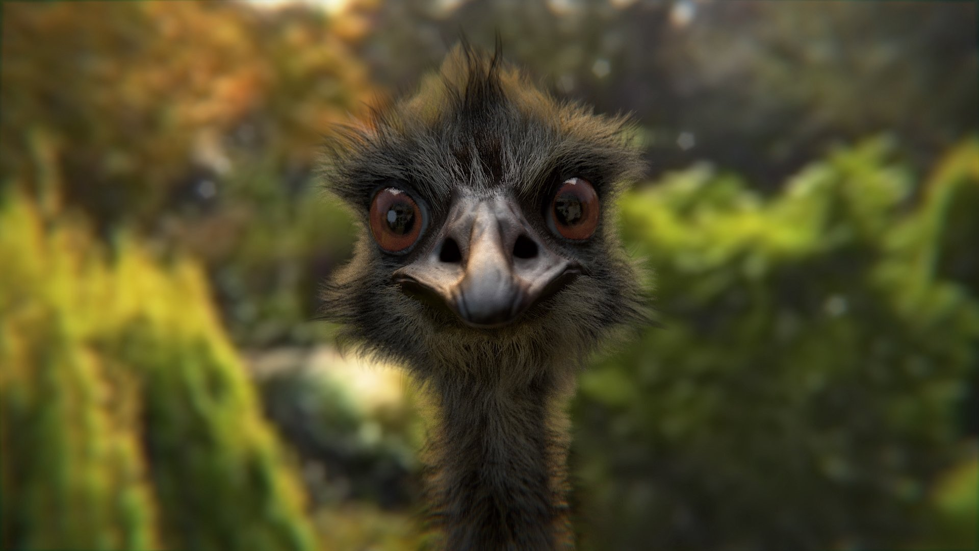 Free Emu high quality wallpaper ID:391640 for 1080p desktop
