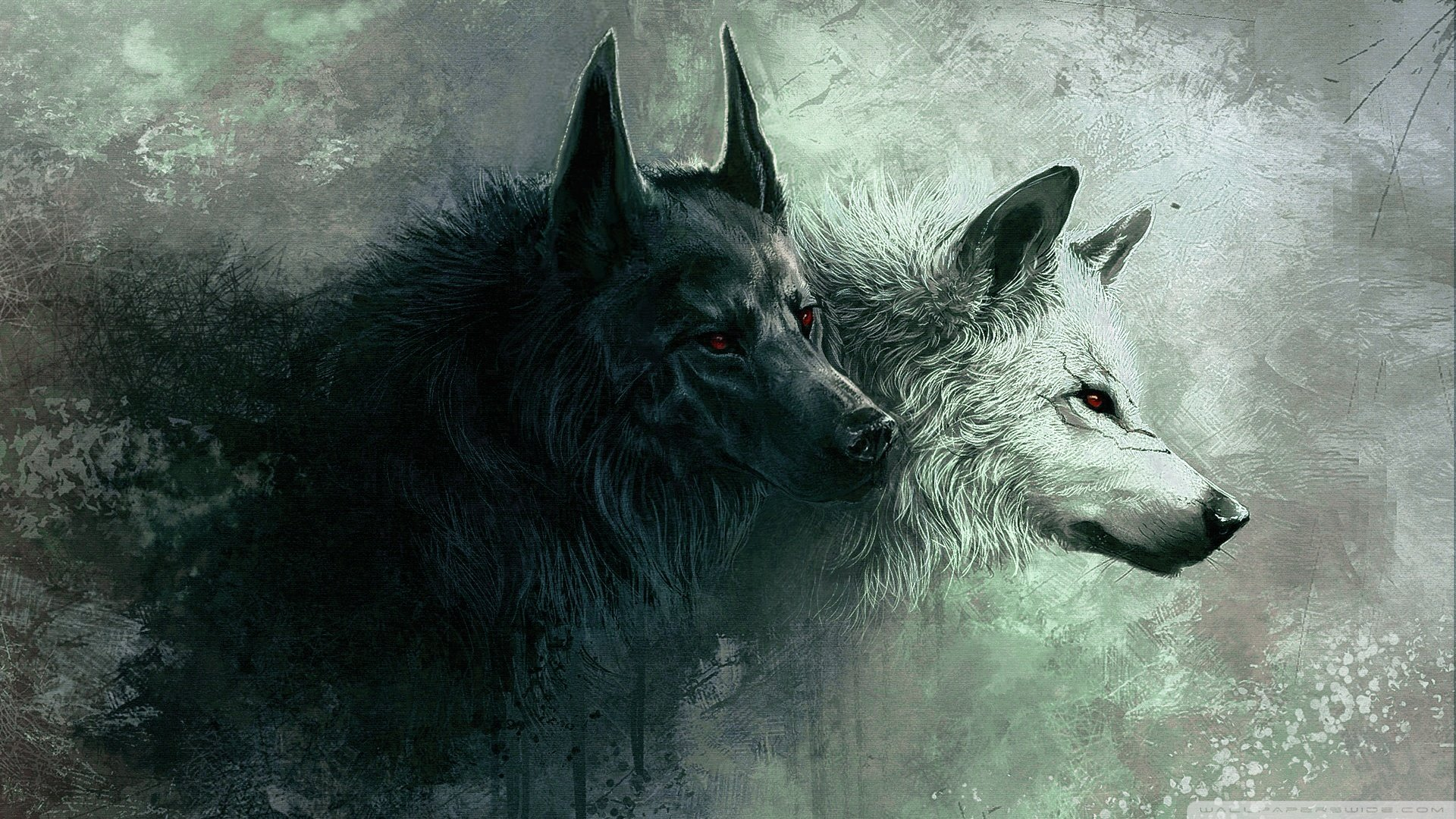 High resolution Wolf hd 1080p wallpaper ID:117617 for PC