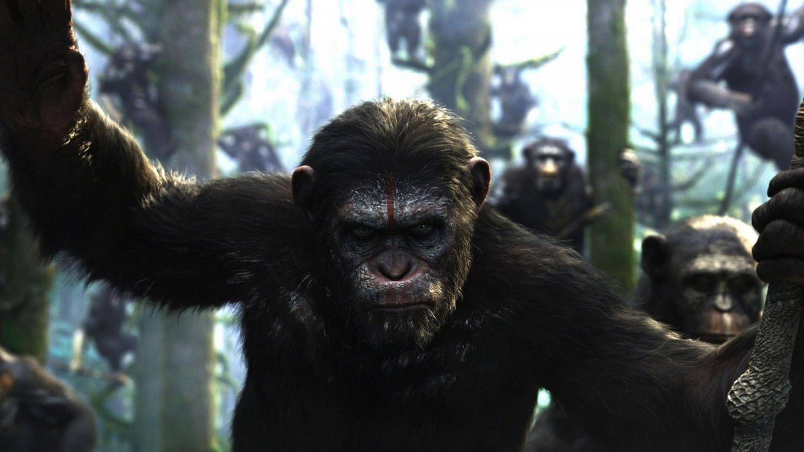Dawn Of The Planet Of The Apes Wallpapers Hd For Desktop Backgrounds