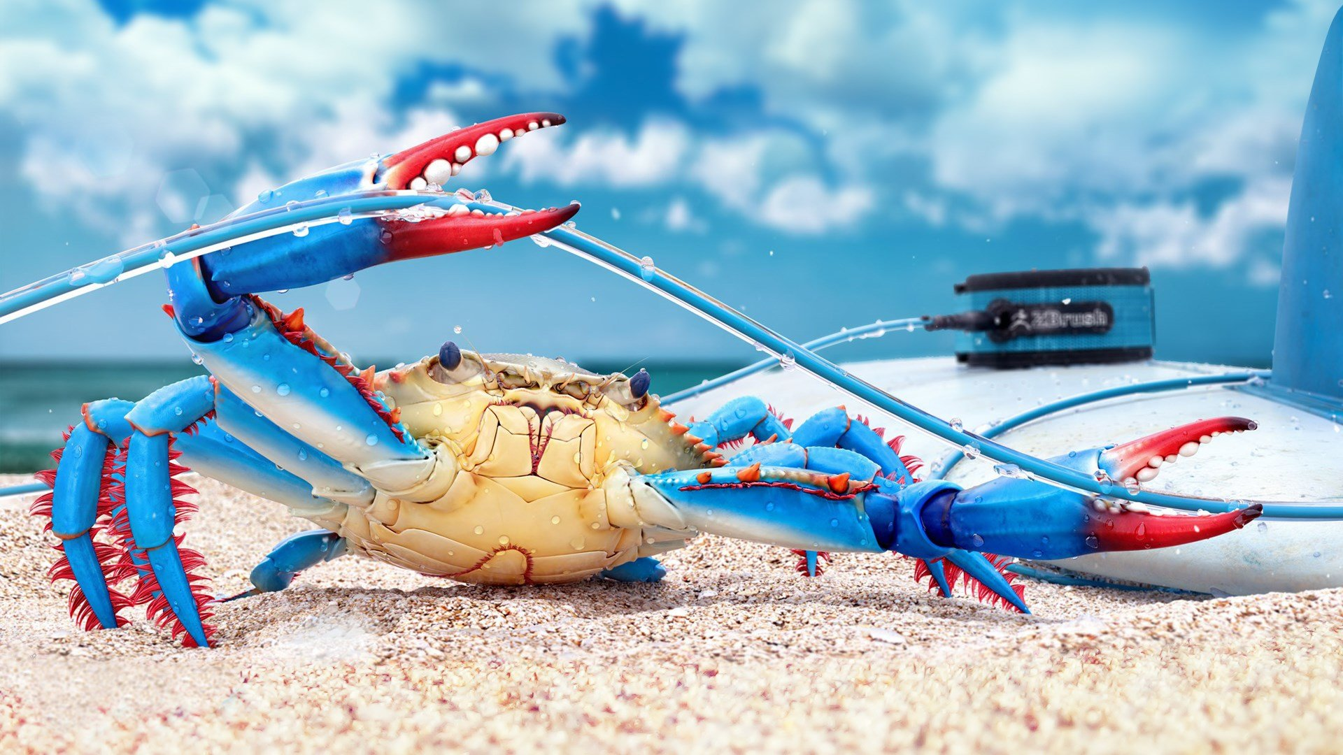 Free download Crab background ID:294328 hd 1080p for PC