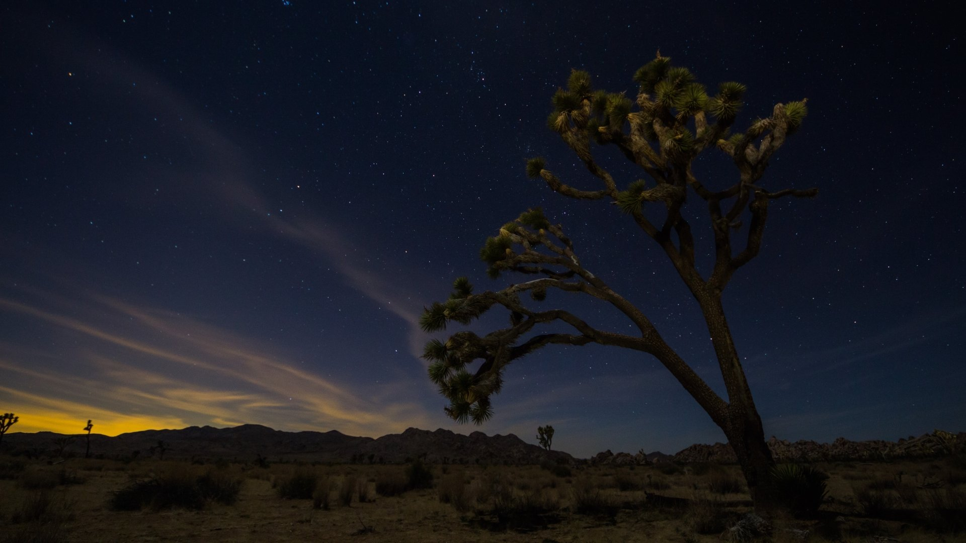 Download full hd 1080p Joshua Tree National Park PC background ID:254699 for free