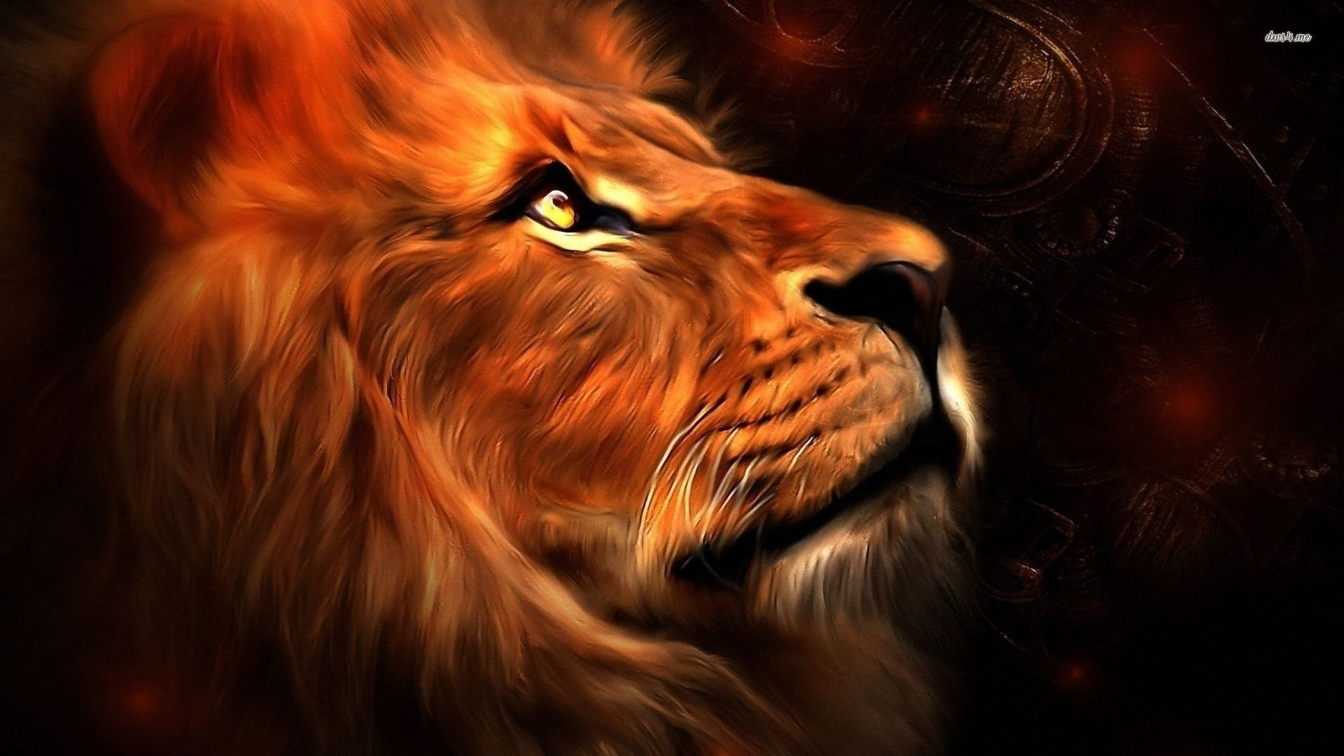 Best Lion wallpaper ID:255189 for High Resolution hd 1080p desktop