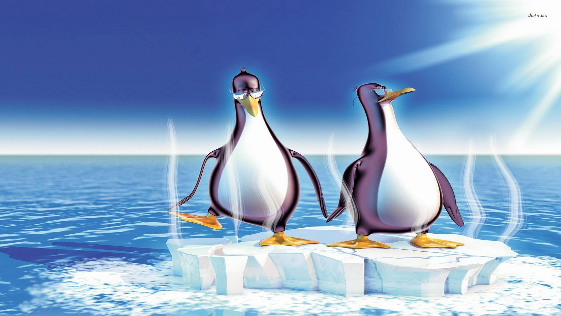 Best Penguin background ID:149424 for High Resolution full hd 1080p computer