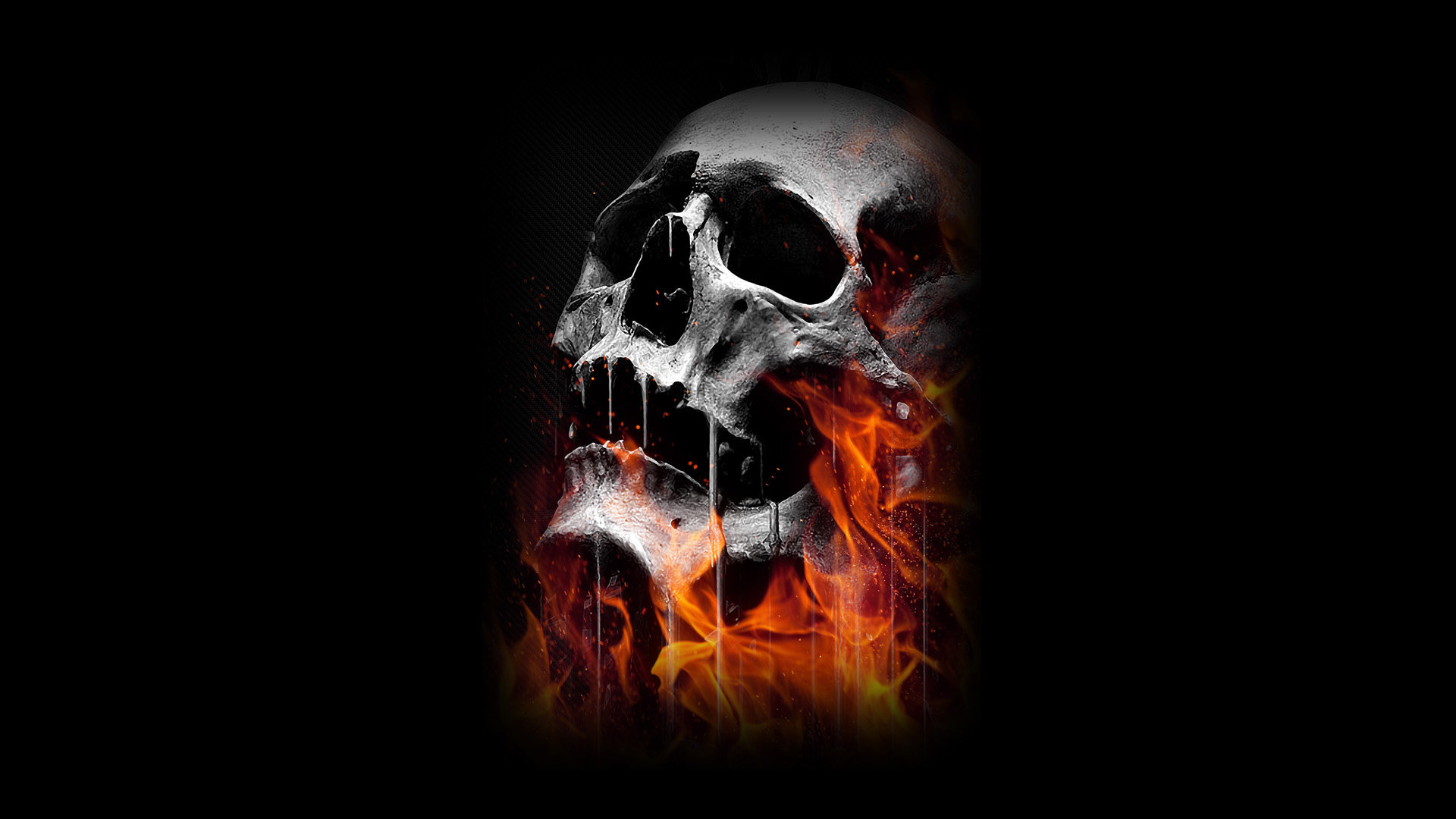 Skull Wallpapers 1920x1080 Full Hd 1080p Desktop Backgrounds