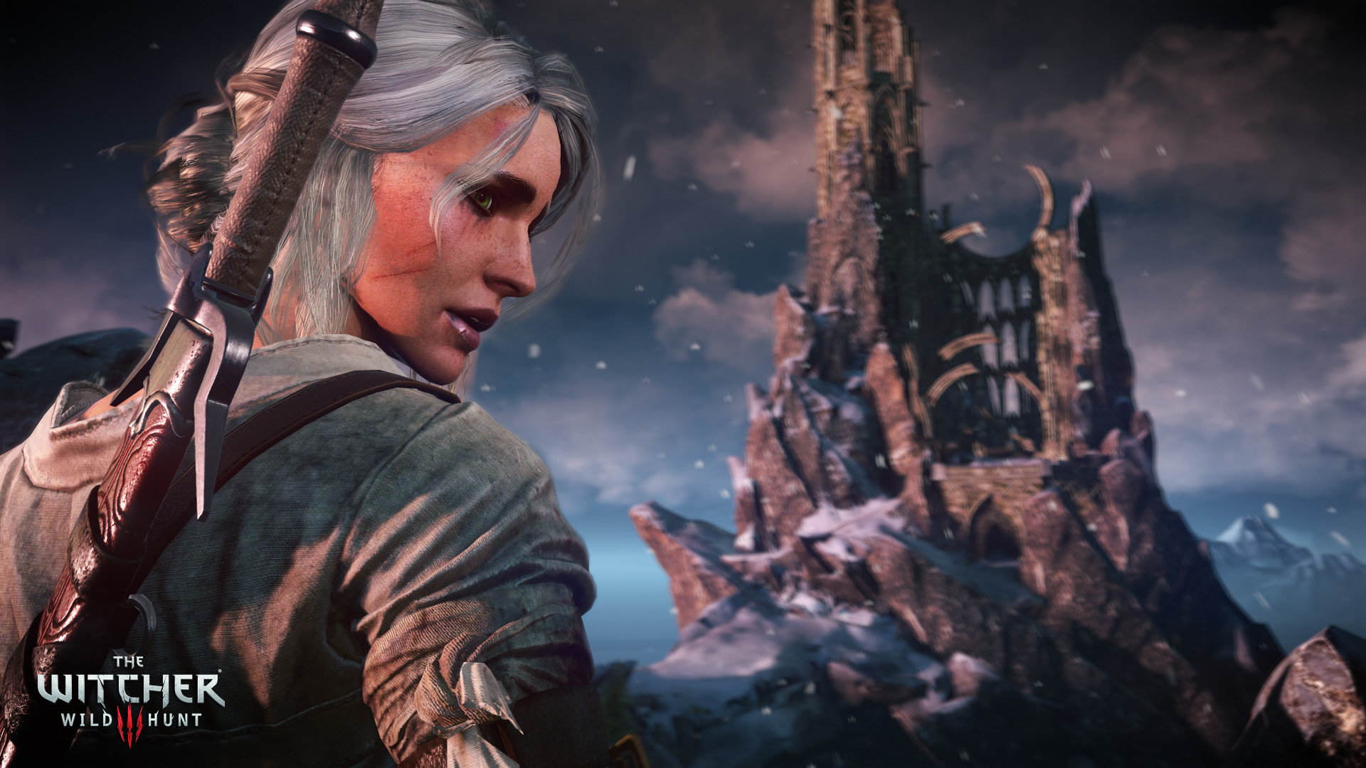 High Resolution The Witcher 3 Wild Hunt Full Hd Wallpaper