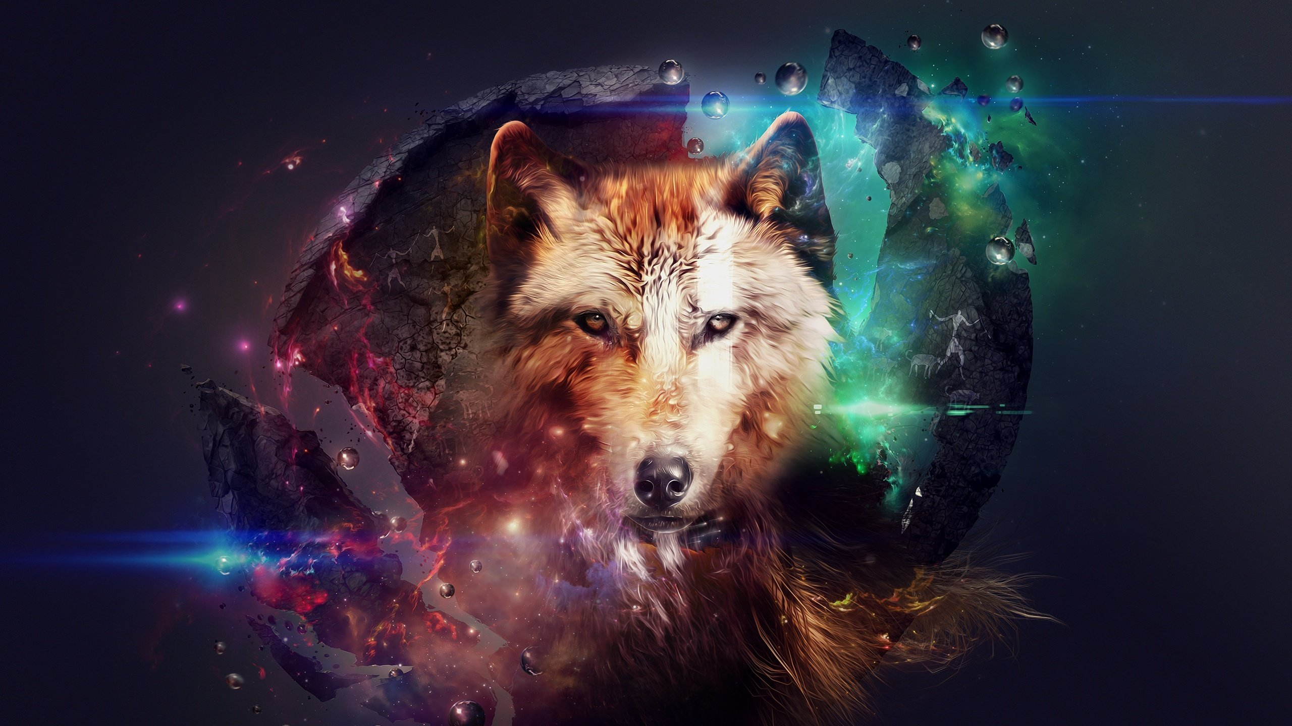 Free download Wolf background ID:117600 hd 2560x1440 for PC