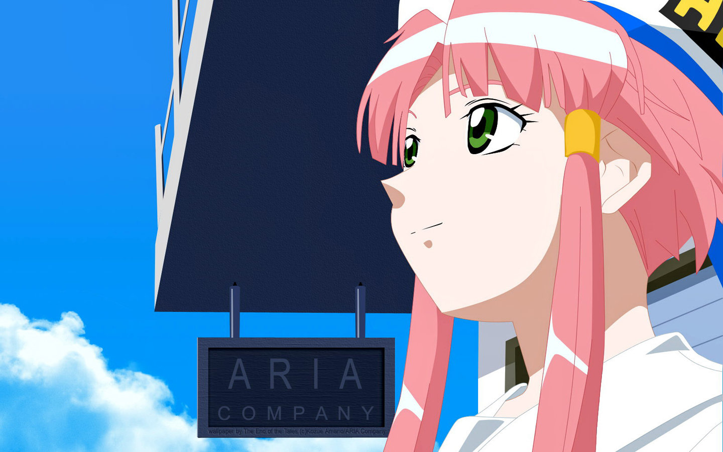 Free Aria high quality wallpaper ID:179296 for hd 1440x900 computer