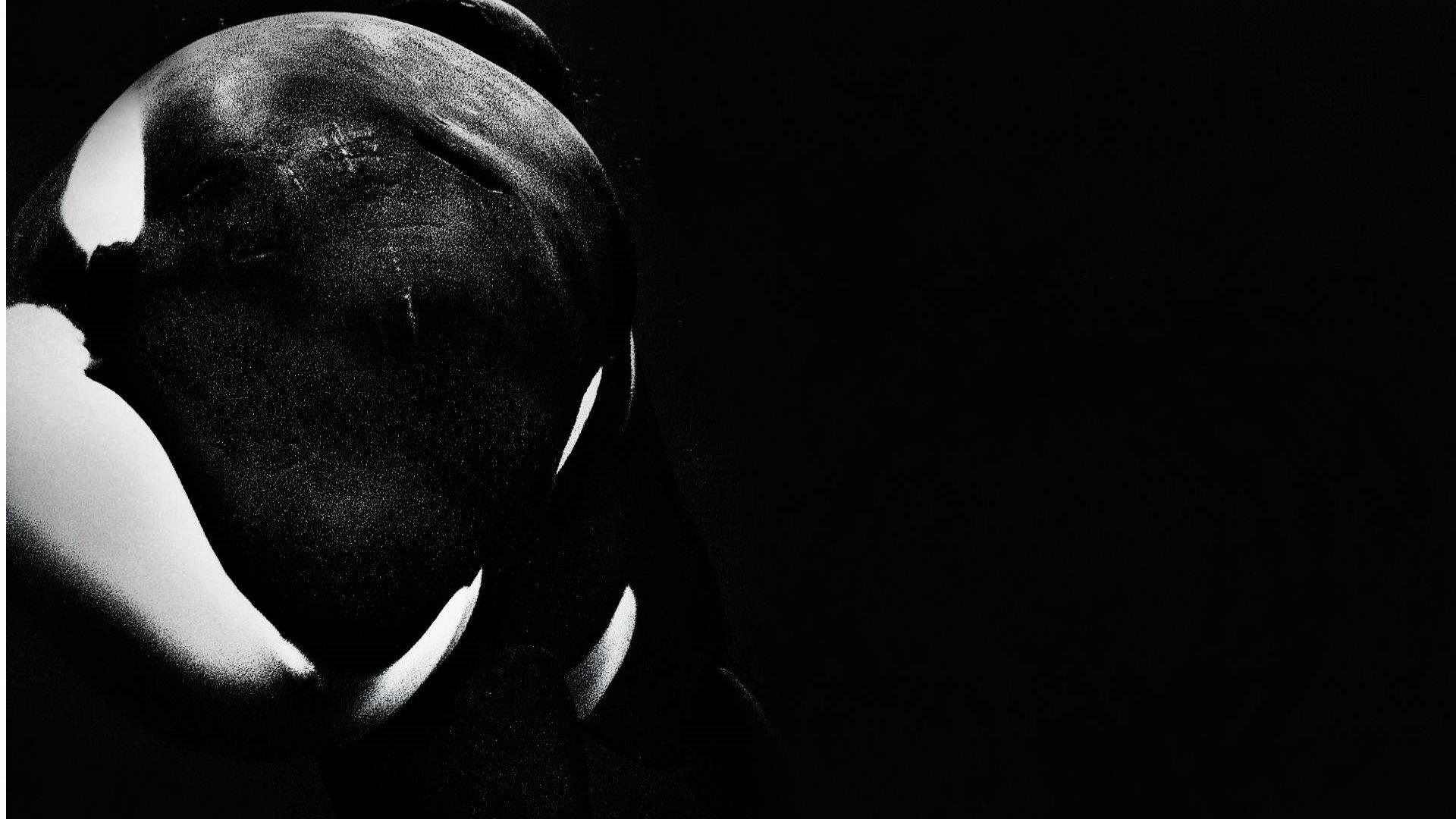 Best Orca wallpaper ID:384453 for High Resolution full hd 1920x1080 computer