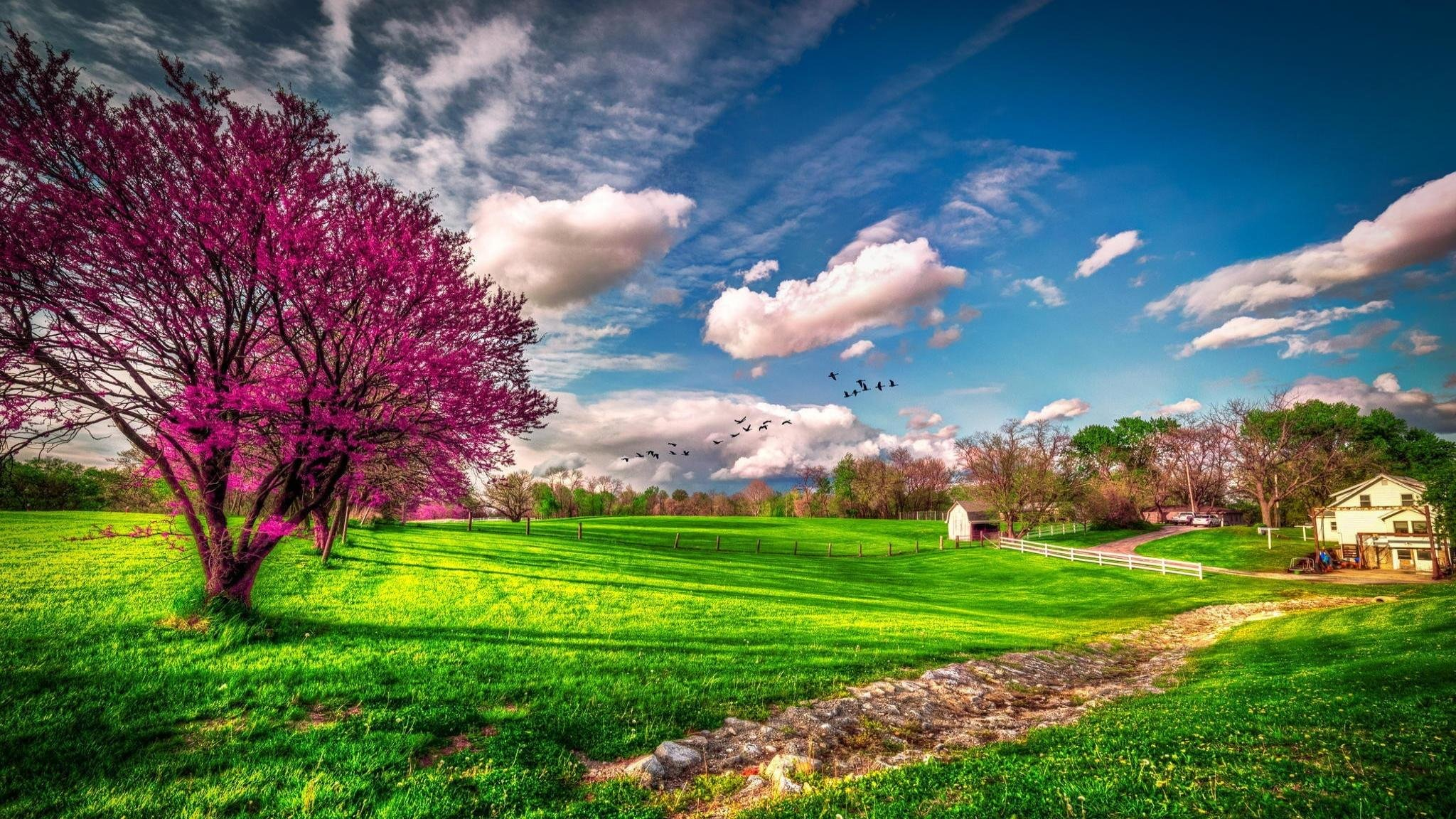 Free Spring high quality background ID:104094 for hd 2048x1152 PC