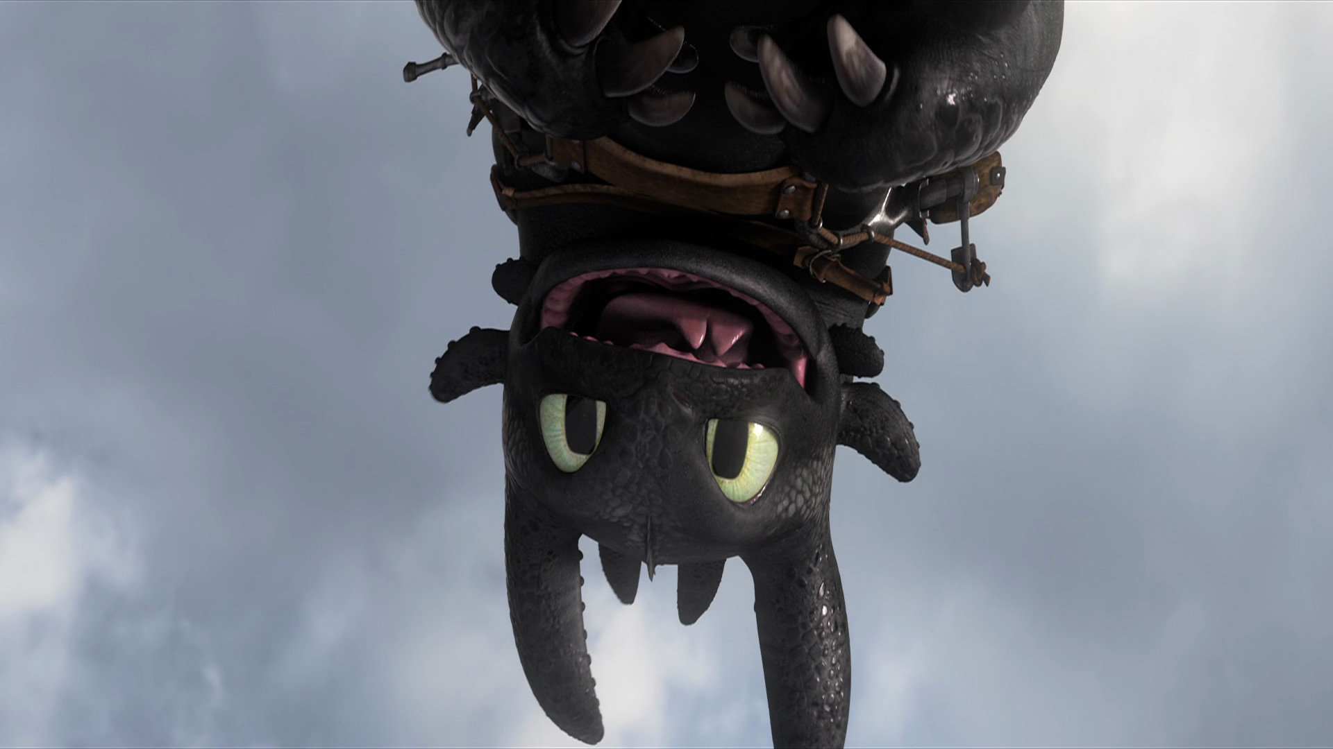 Toothless how to train your dragon wallpapers hd for - How to train your dragon hd download ...