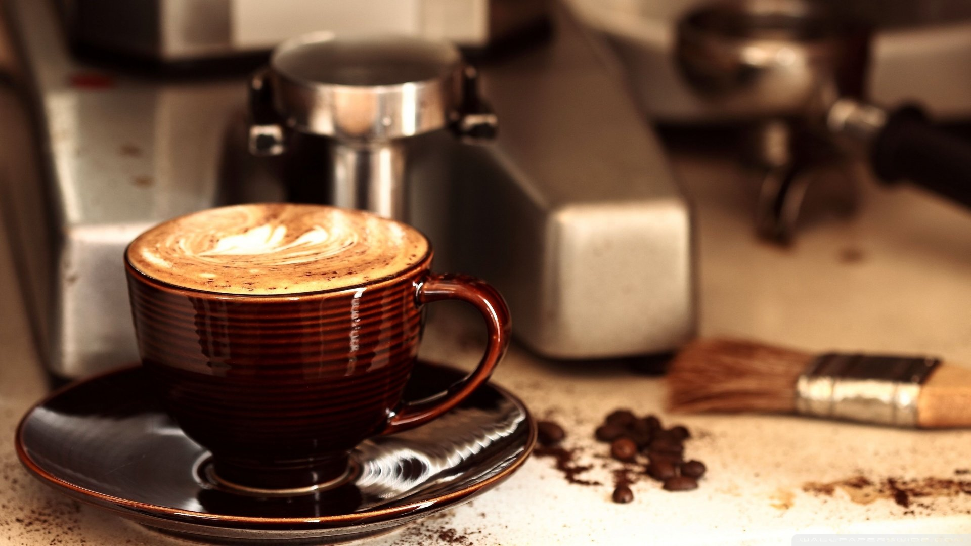 High resolution Cappuccino hd 1920x1080 background ID:129570 for PC
