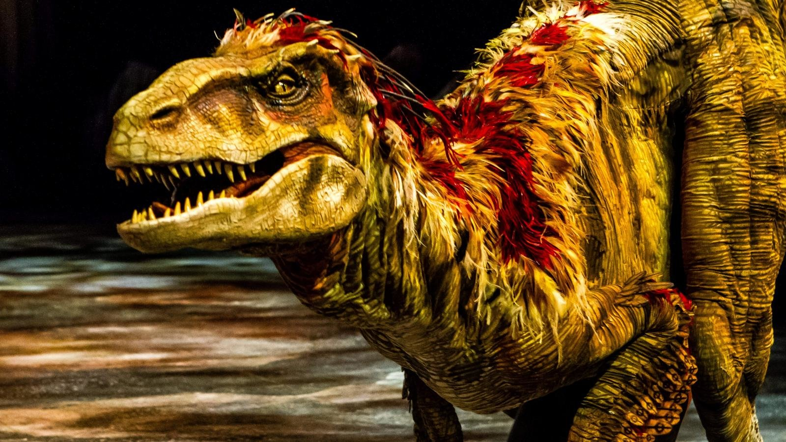 Best Dinosaur wallpaper ID:73942 for High Resolution hd 1600x900 PC