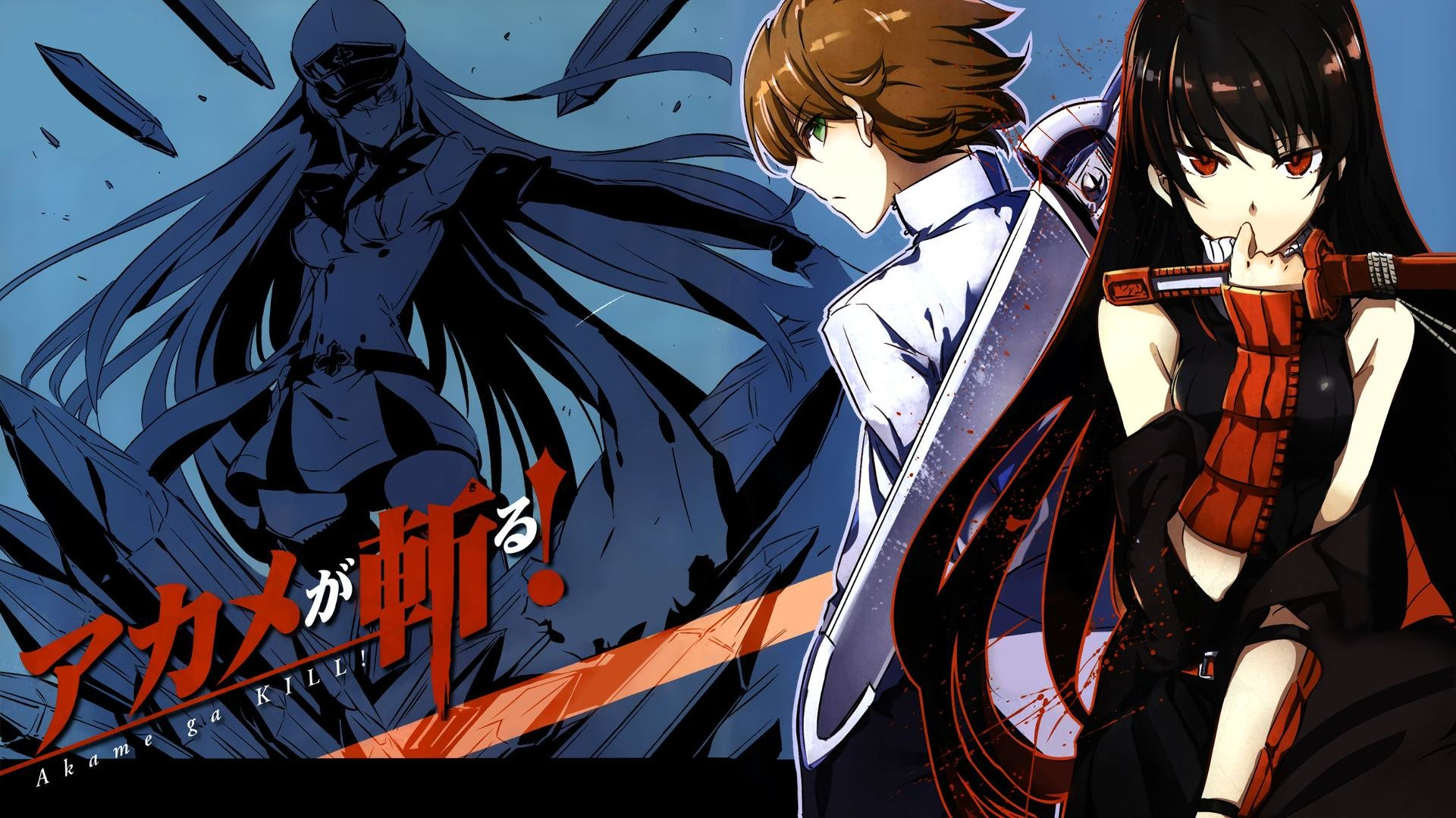Download full hd 1080p Tatsumi (Akame Ga Kill!) PC background ID:208062 for free