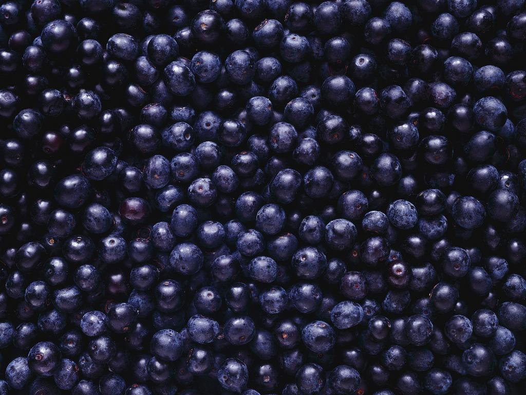 Free Blueberry high quality wallpaper ID:69056 for hd 1024x768 desktop