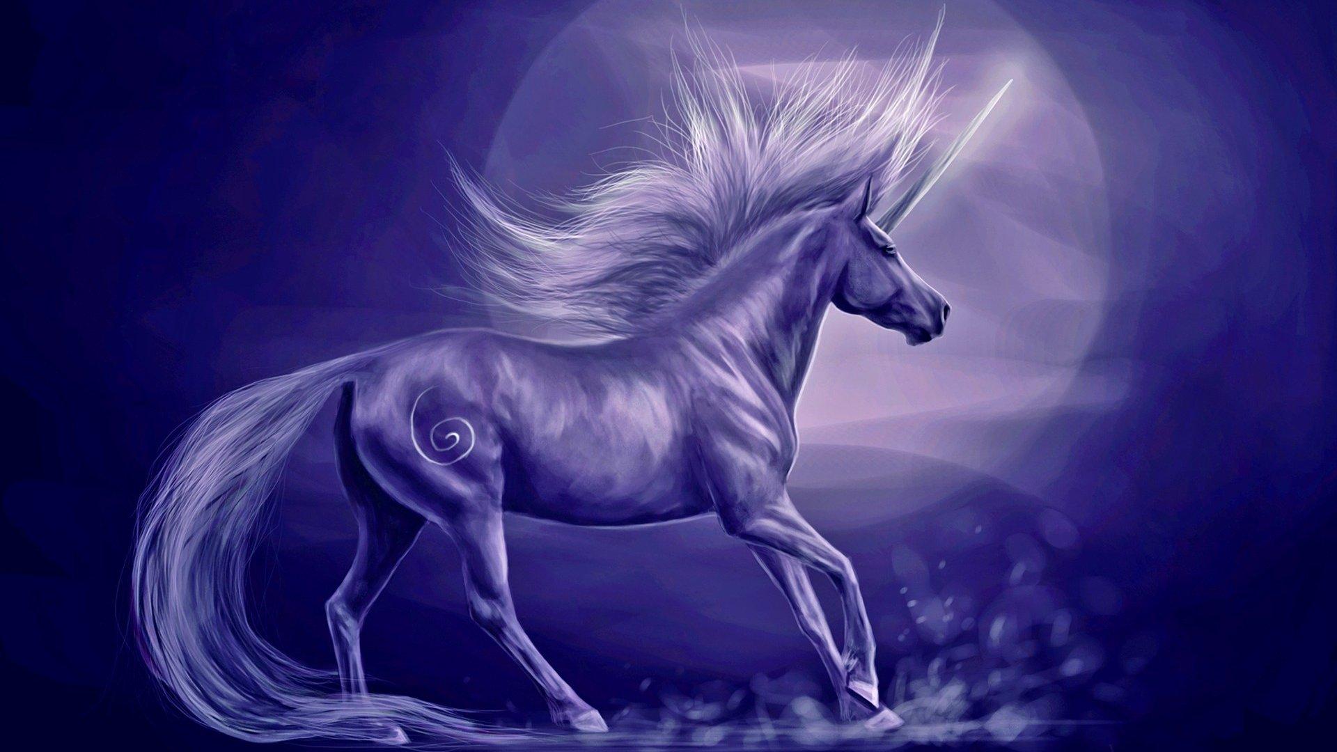 Simple Wallpaper Halloween Unicorn - unicorn-background-full-hd-1080p-408704  Image_536580.jpg
