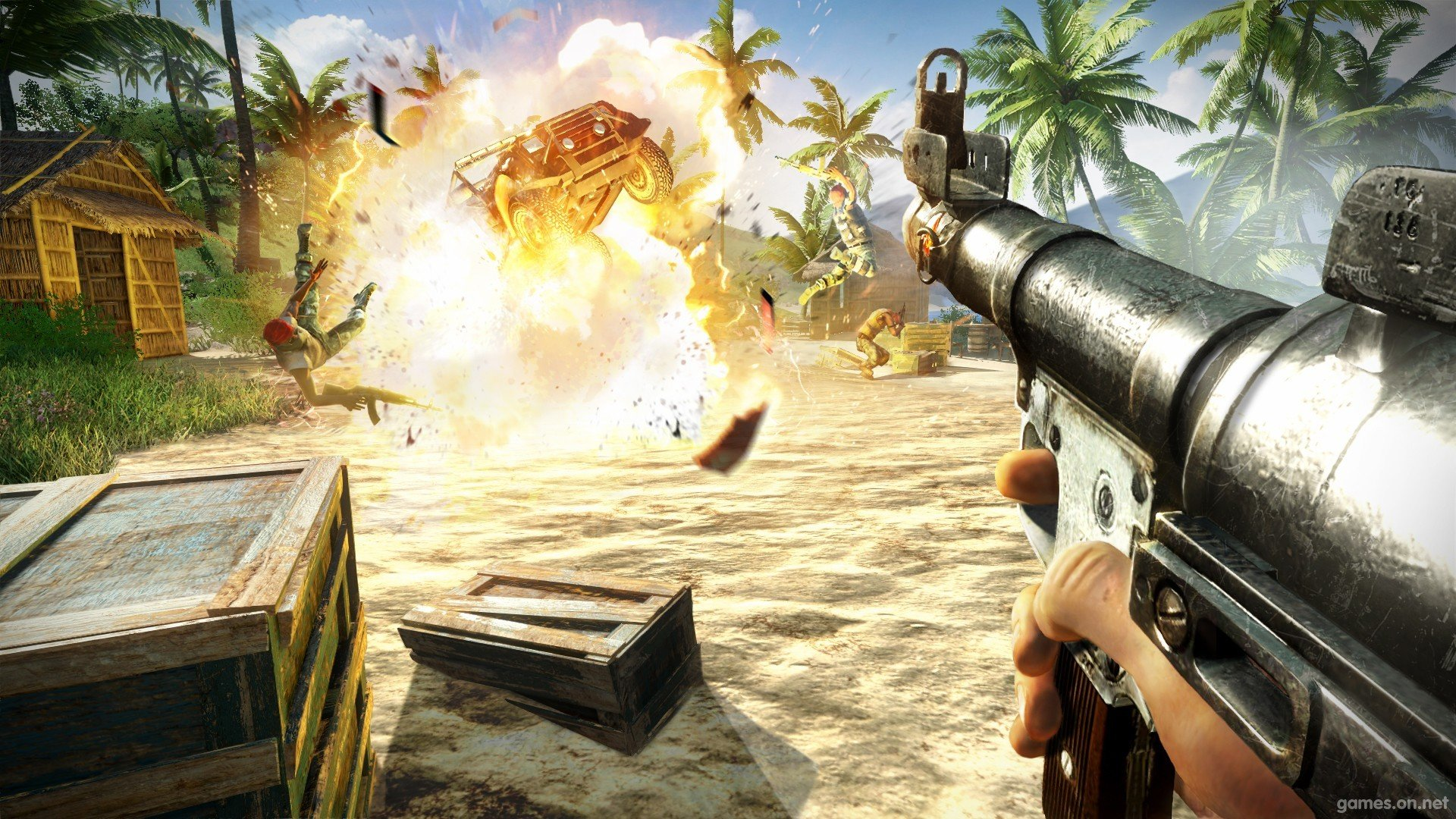 Free Far Cry 3 High Quality Wallpaper Id 282499 For Hd 1080p Desktop