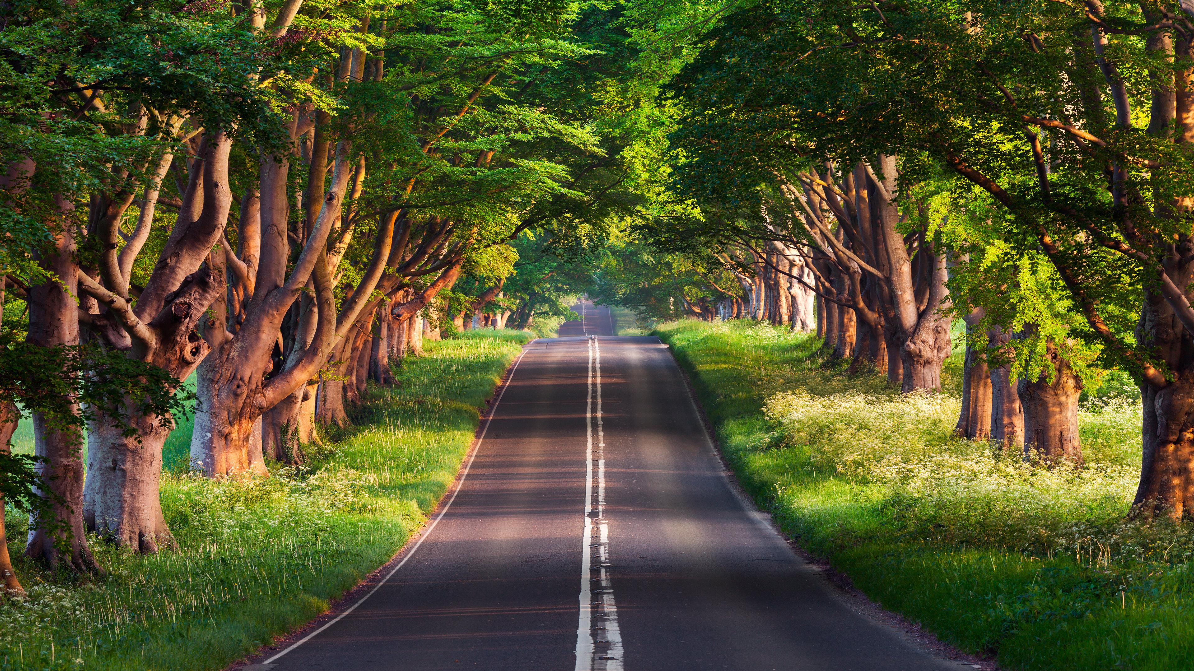 Best Road Background Id 490880 For High Resolution 4k Desktop
