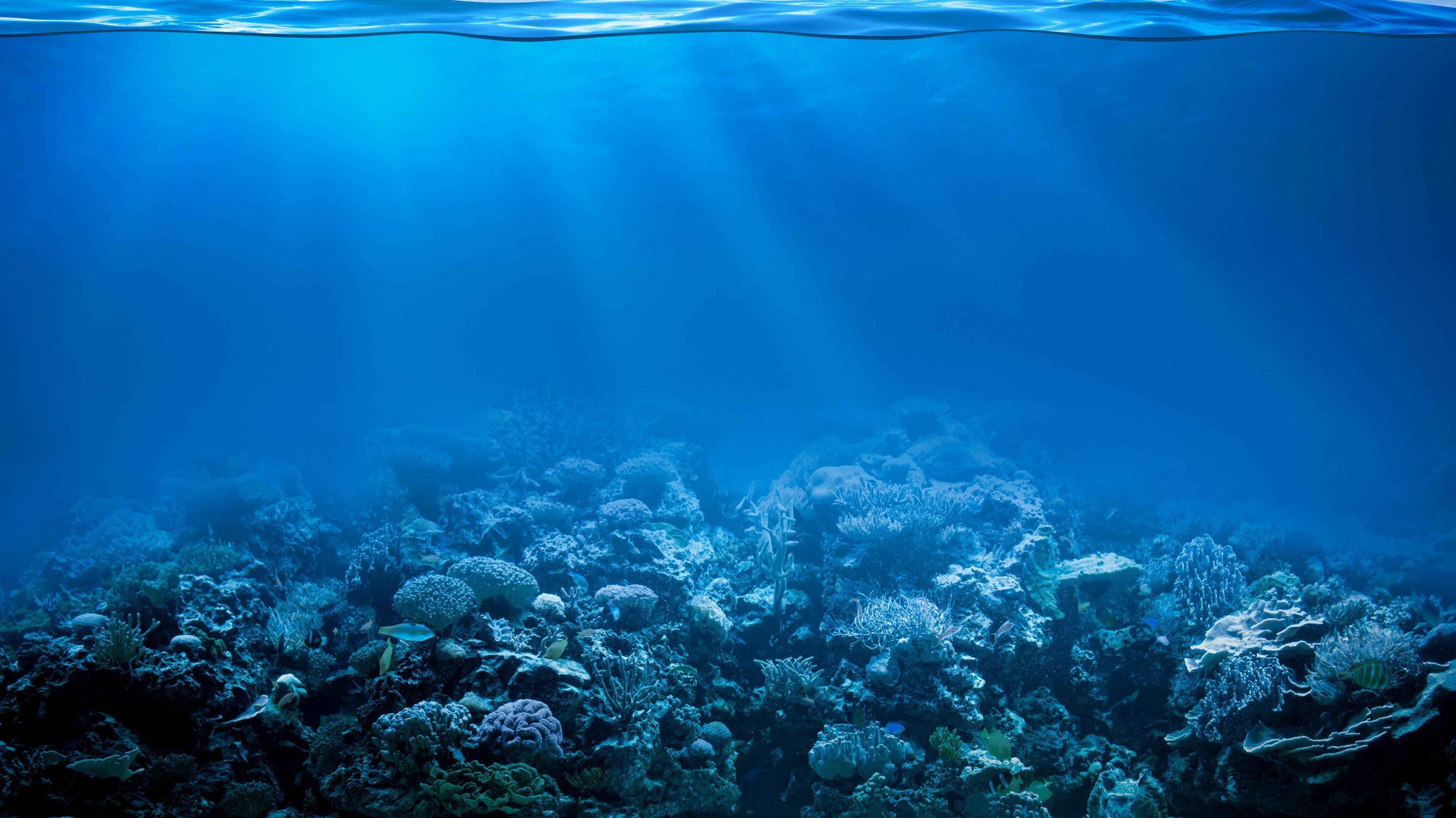 Underwater wallpapers 3840x2160 ultra hd 4k desktop - Underwater wallpaper for pc ...