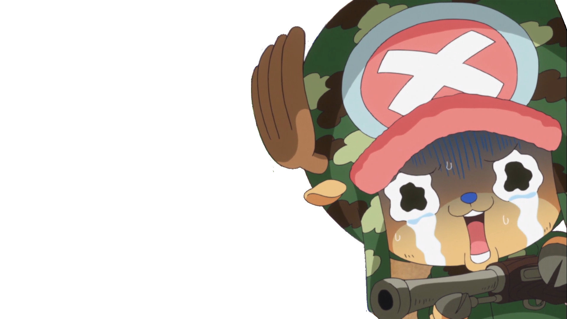 High resolution Tony Tony Chopper hd 1920x1080 wallpaper ID:314481 for desktop