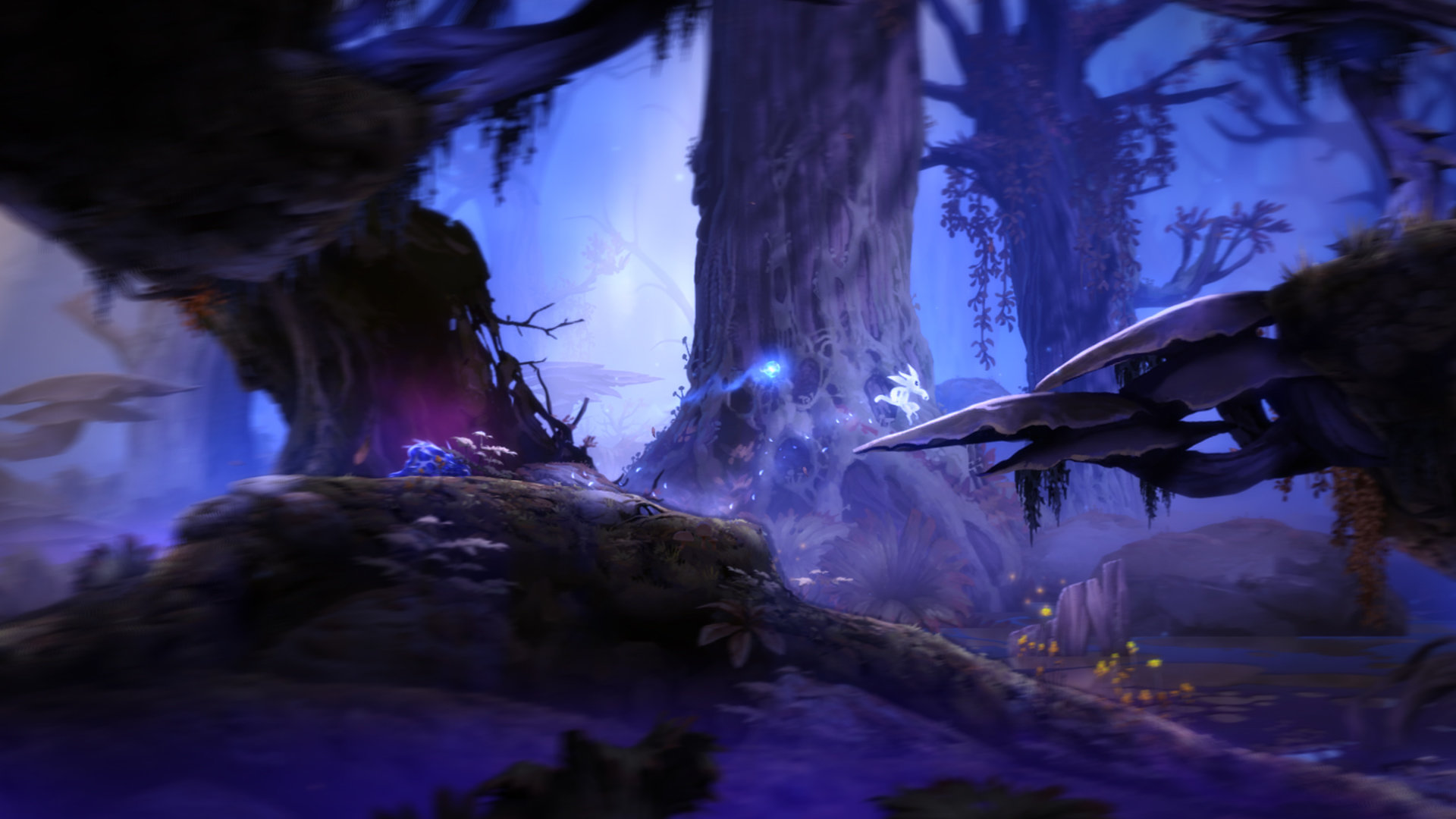 Ori And The Blind Forest Wallpapers 1920x1080 Full Hd 1080p
