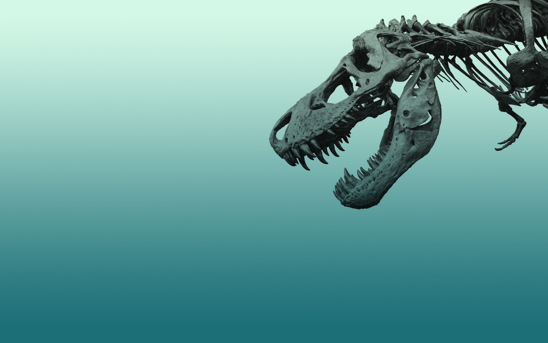 Free Tyrannosaurus Rex high quality background ID:73872 for hd 1920x1200 computer