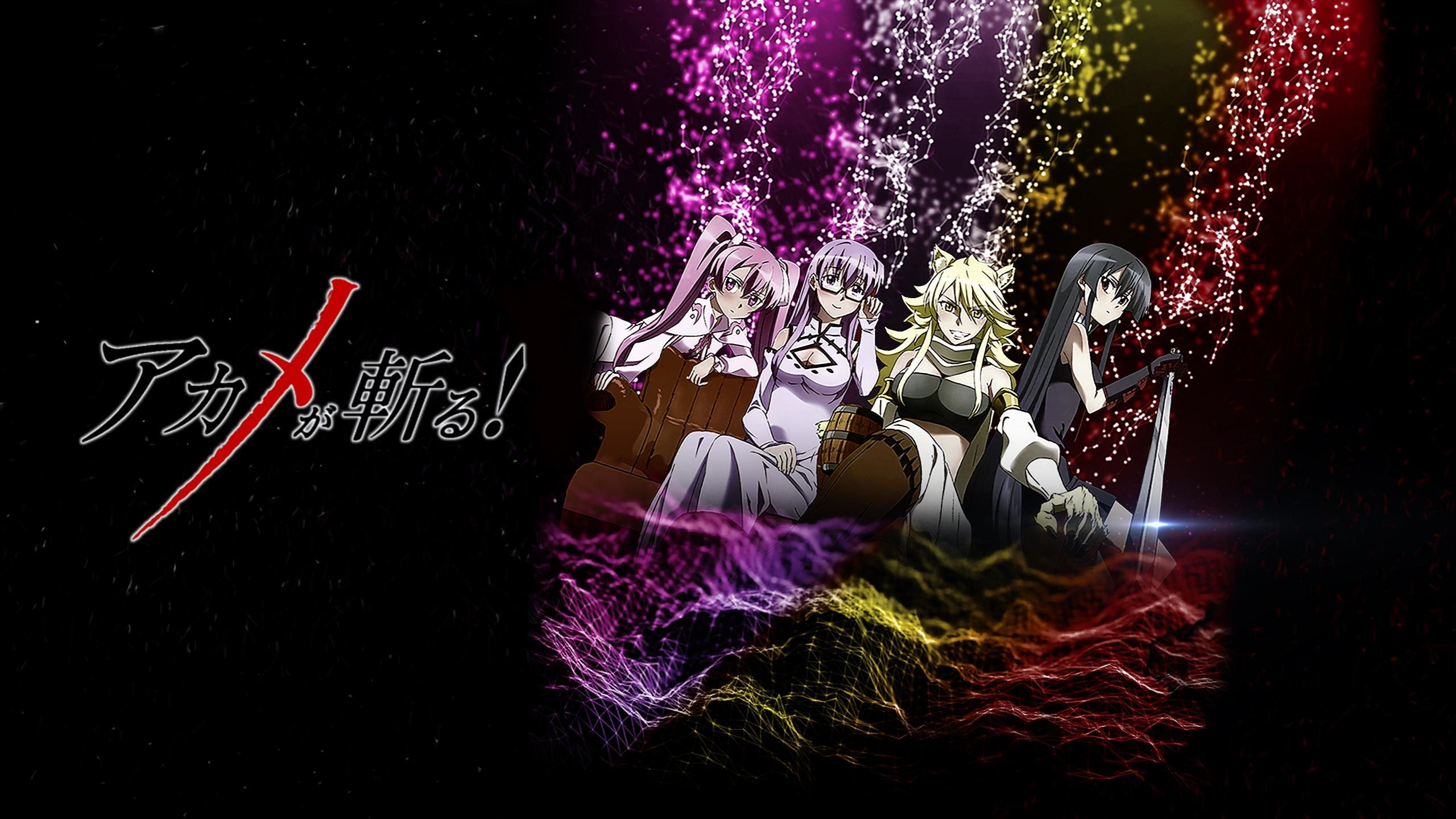 Awesome Akame Ga Kill! free wallpaper ID:208004 for hd 2560x1440 PC