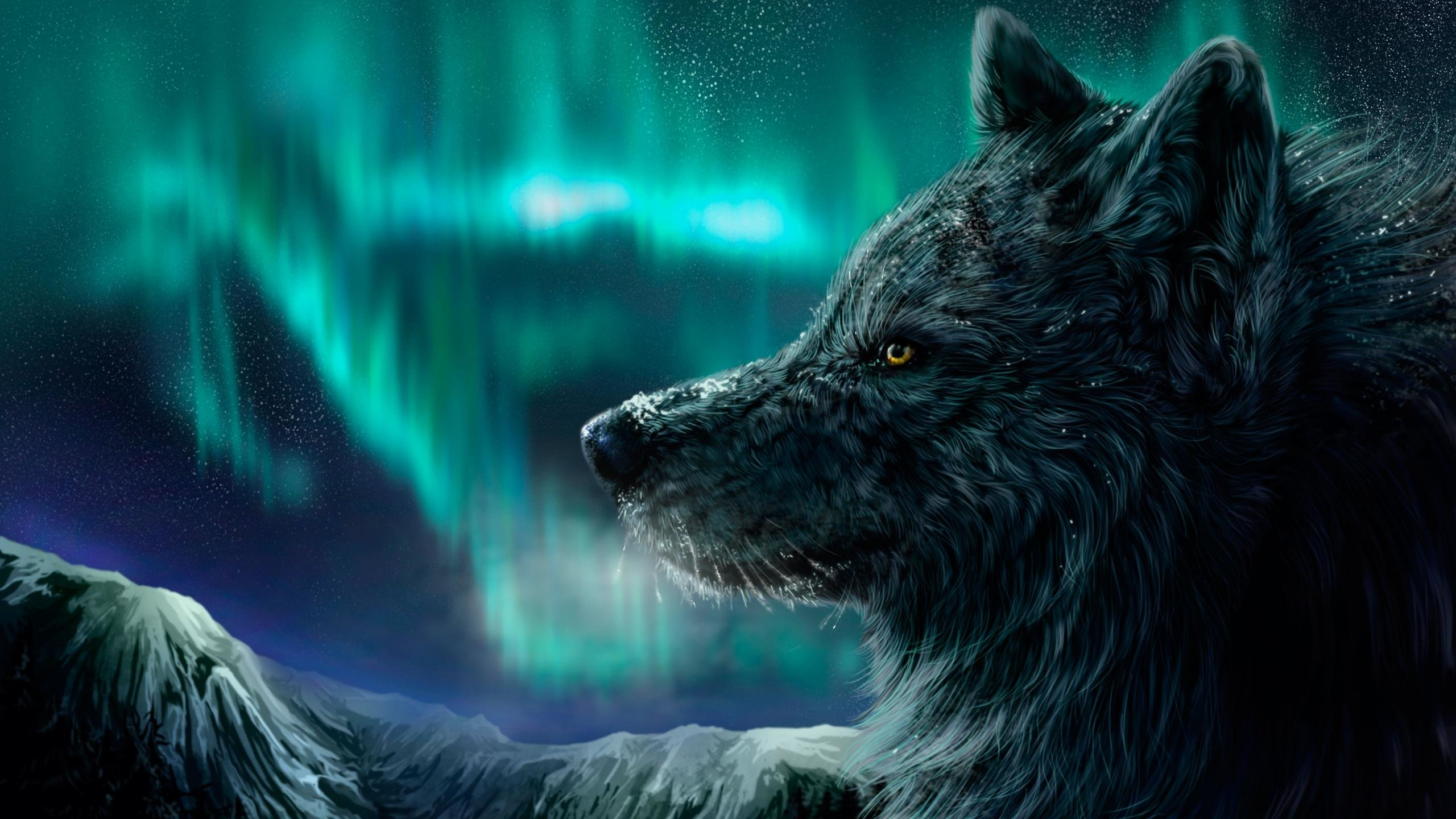 Best Wolf wallpaper ID:118080 for High Resolution hd 2560x1440 PC