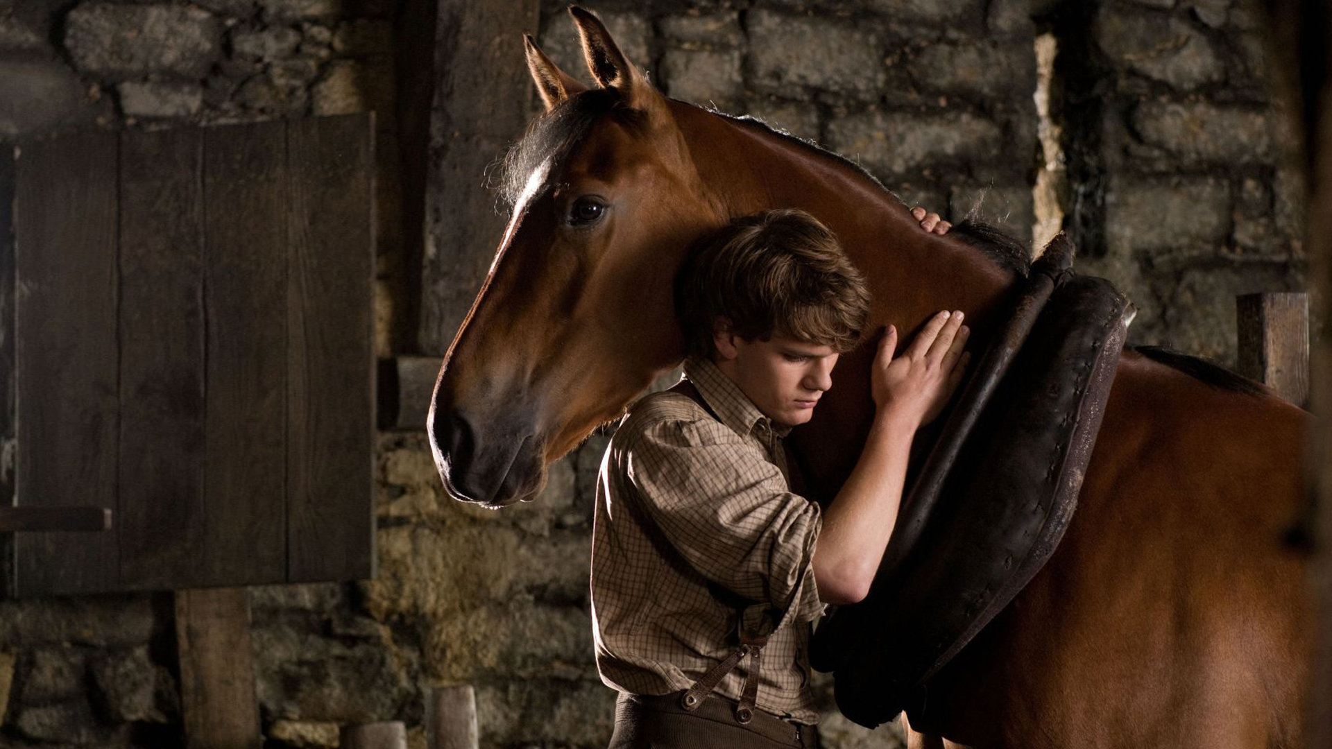 War Horse Wallpapers 1920x1080 Full Hd 1080p Desktop Backgrounds