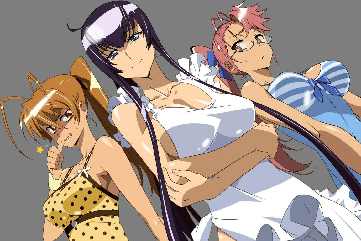 Download hd 1152x768 Highschool Of The Dead desktop background ID:447748 for free