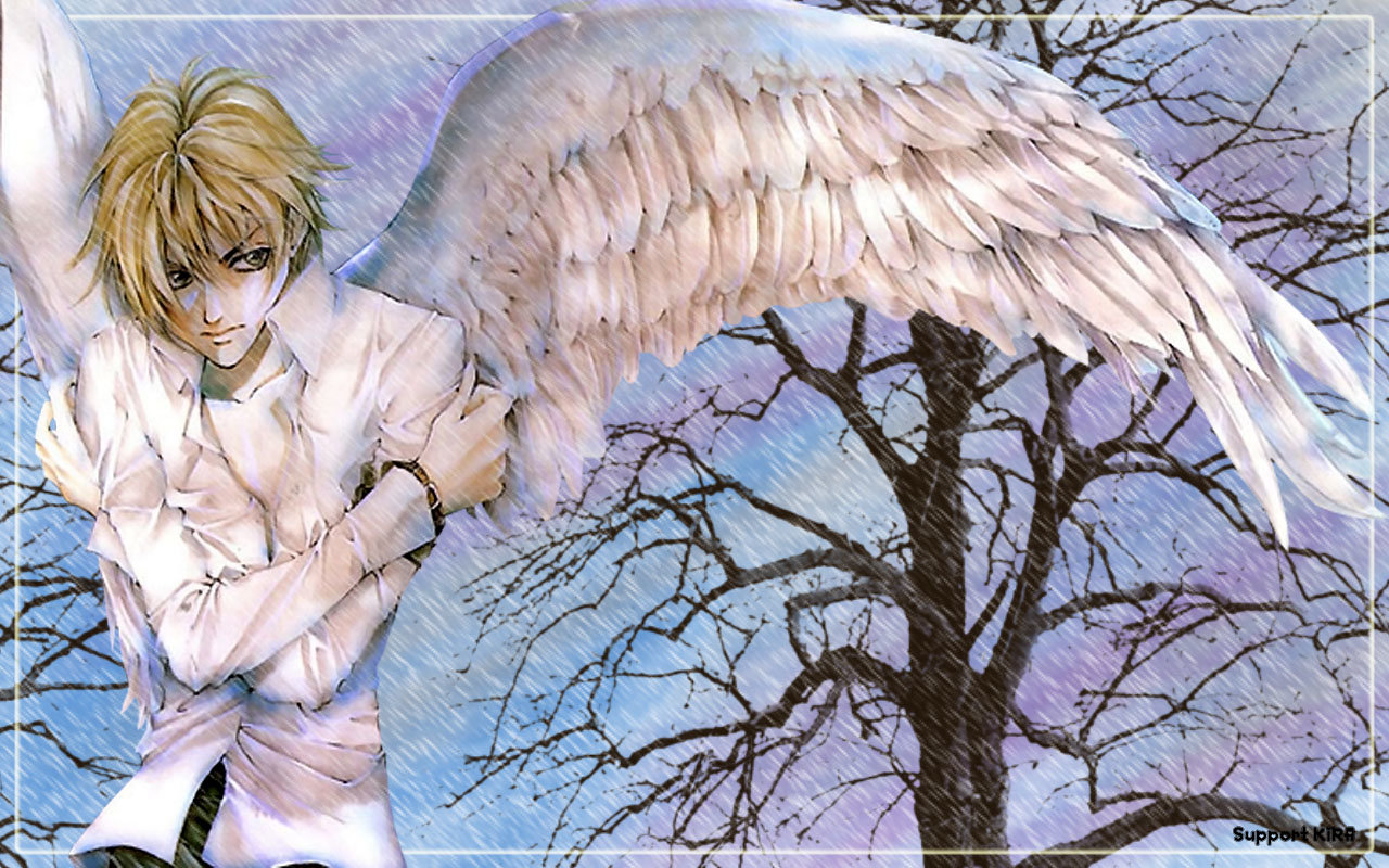 Best Angel Sanctuary background ID:26579 for High Resolution hd 1280x800 PC
