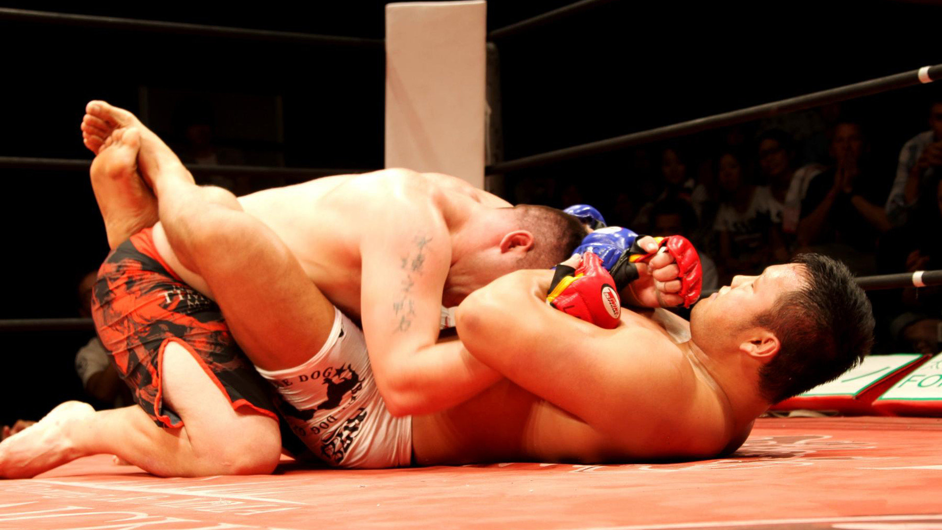 Download 1080p MMA (Mixed Martial Arts) PC background ID:389413 for free