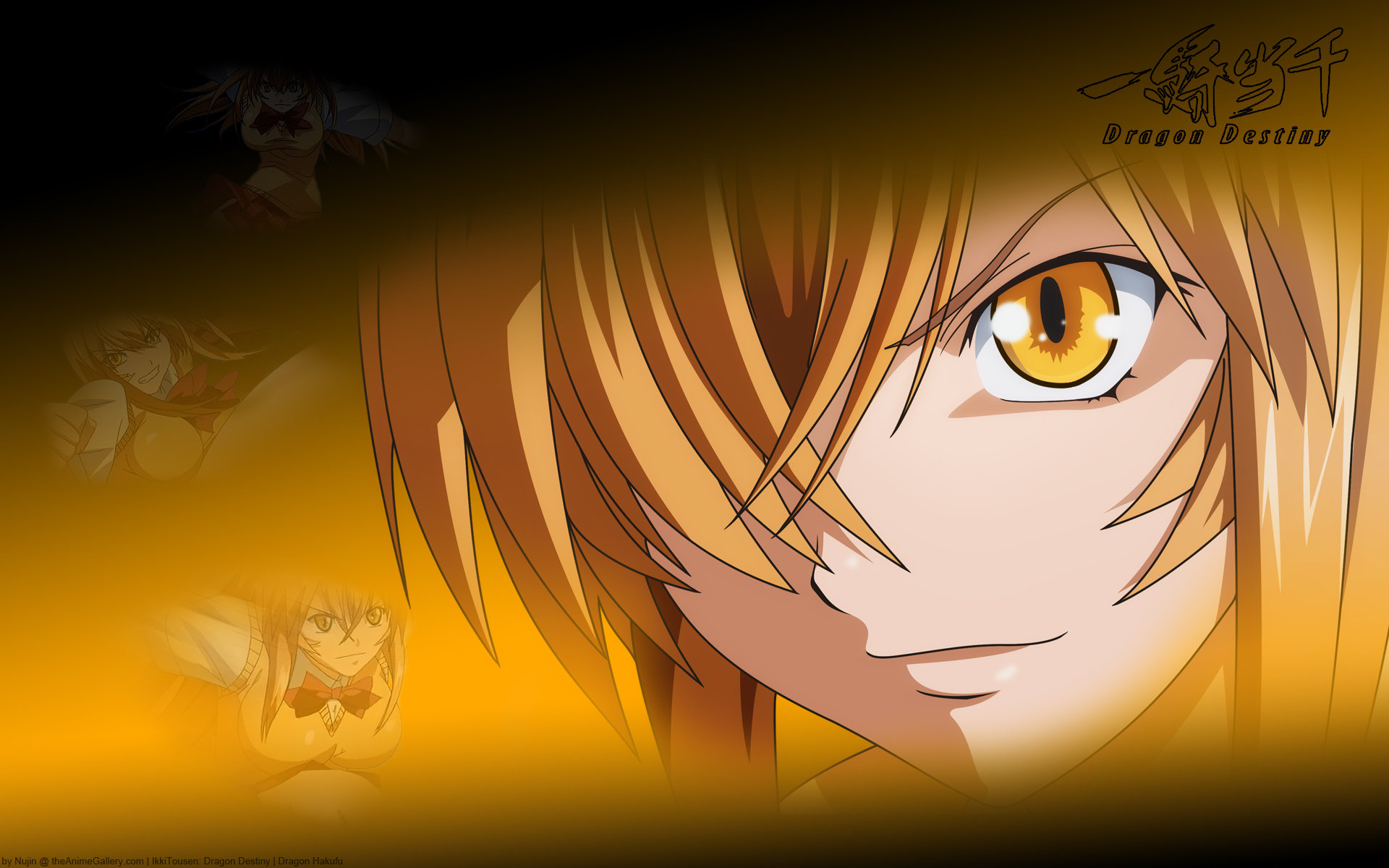 Download hd 1920x1200 Ikki Tousen desktop wallpaper ID:126114 for free