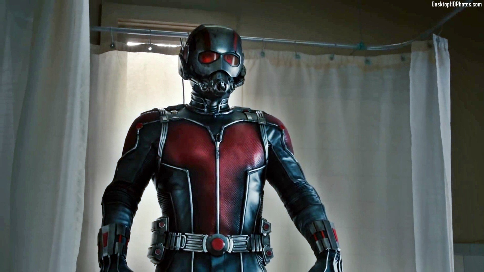 Free Ant Man High Quality Wallpaper ID254637 For Full Hd 1080p PC