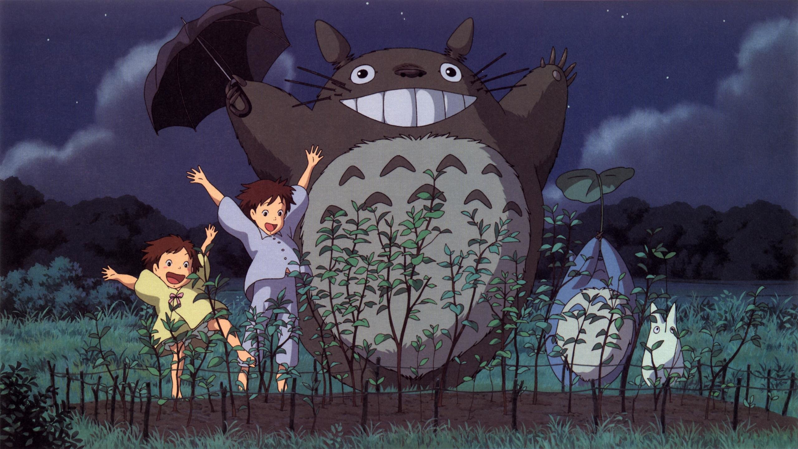 Awesome My Neighbor Totoro free background ID:259339 for hd 2560x1440 PC