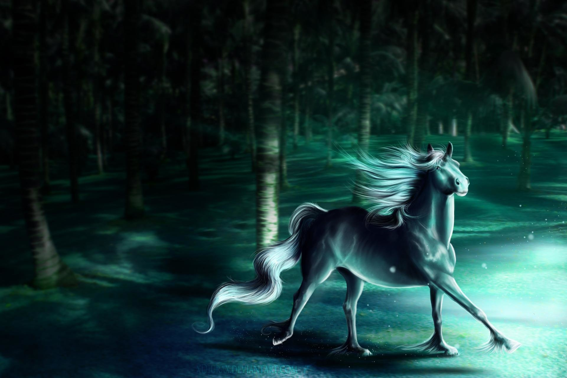 Download Hd 1920x1280 Horse Fantasy Computer Wallpaper Id282538 For Free