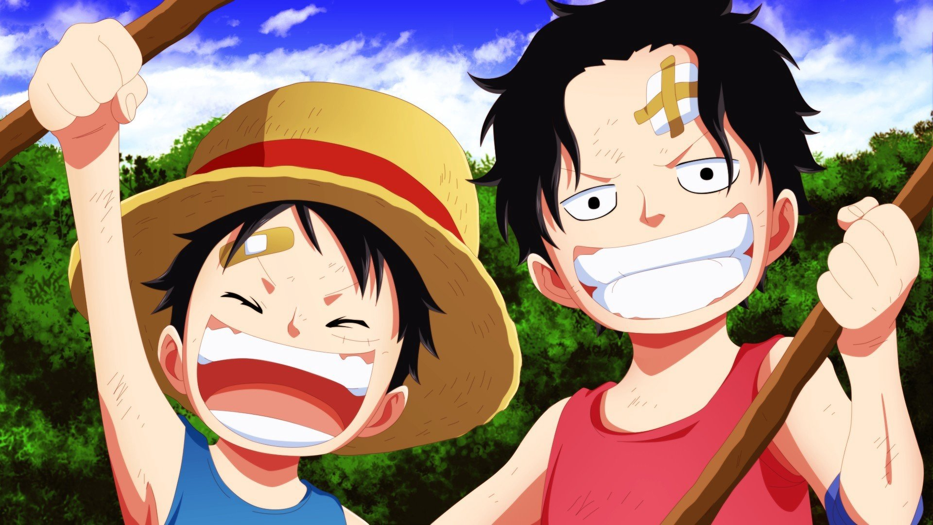 Free One Piece high quality background ID:314022 for 1080p desktop