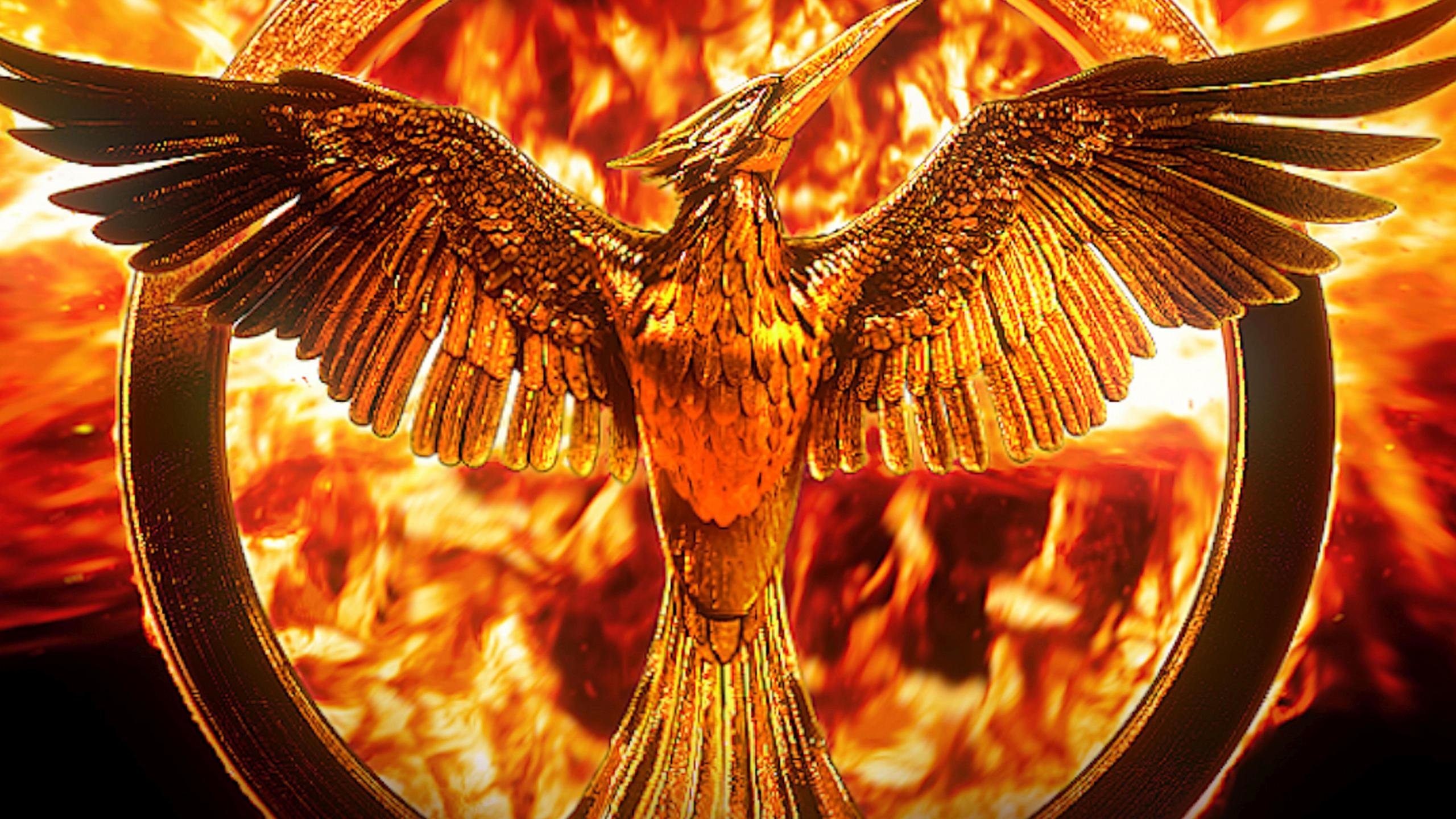 The Hunger Games 2560x1440 Background Wallpaper | Cool ...