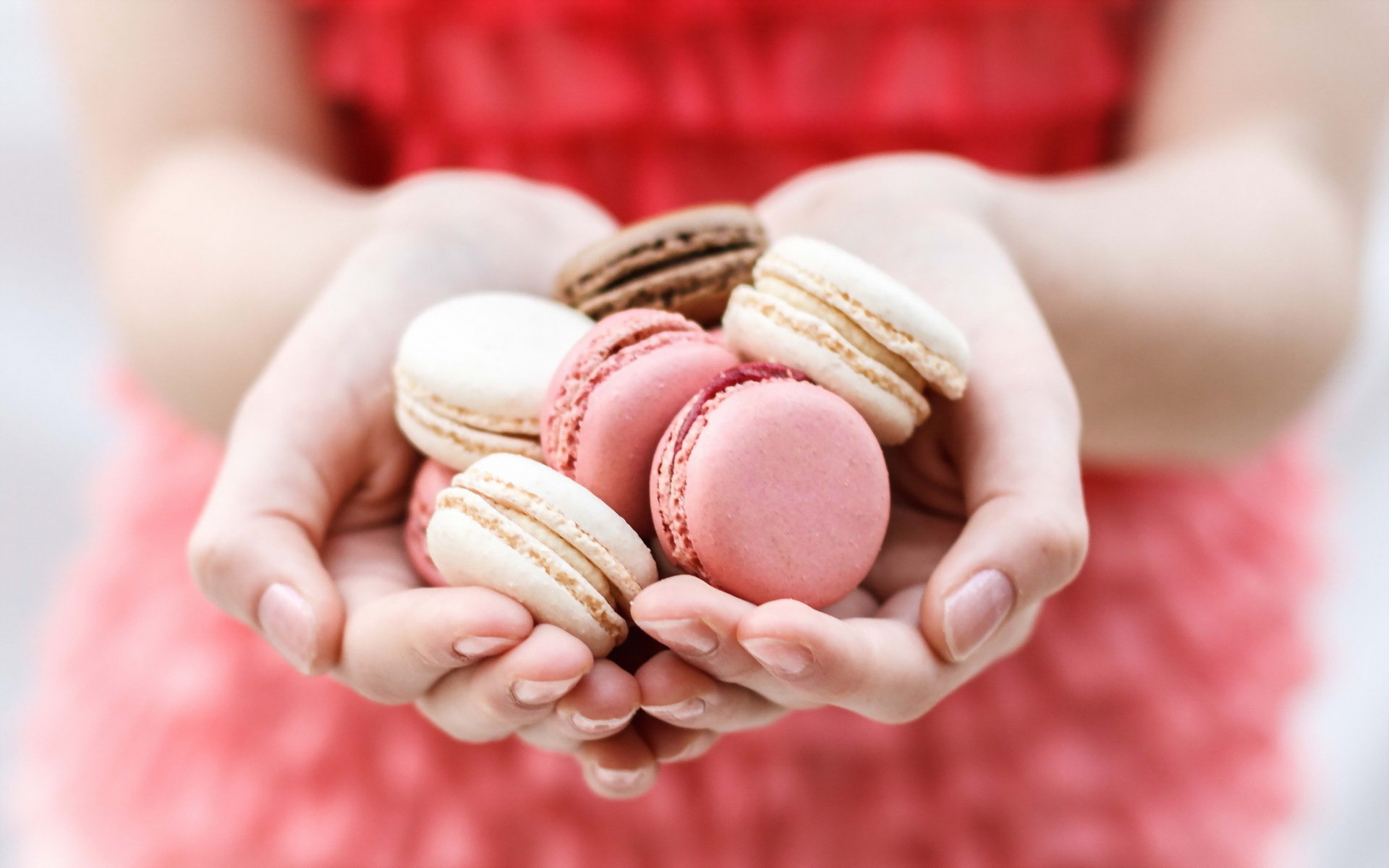 Download hd 1920x1200 Macaron computer wallpaper ID:420902 for free