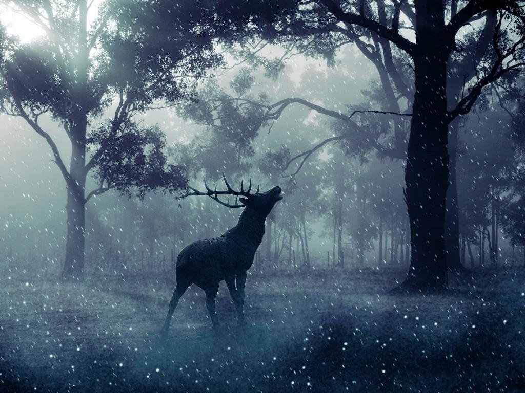 Free Deer high quality wallpaper ID:238563 for hd 1024x768 PC
