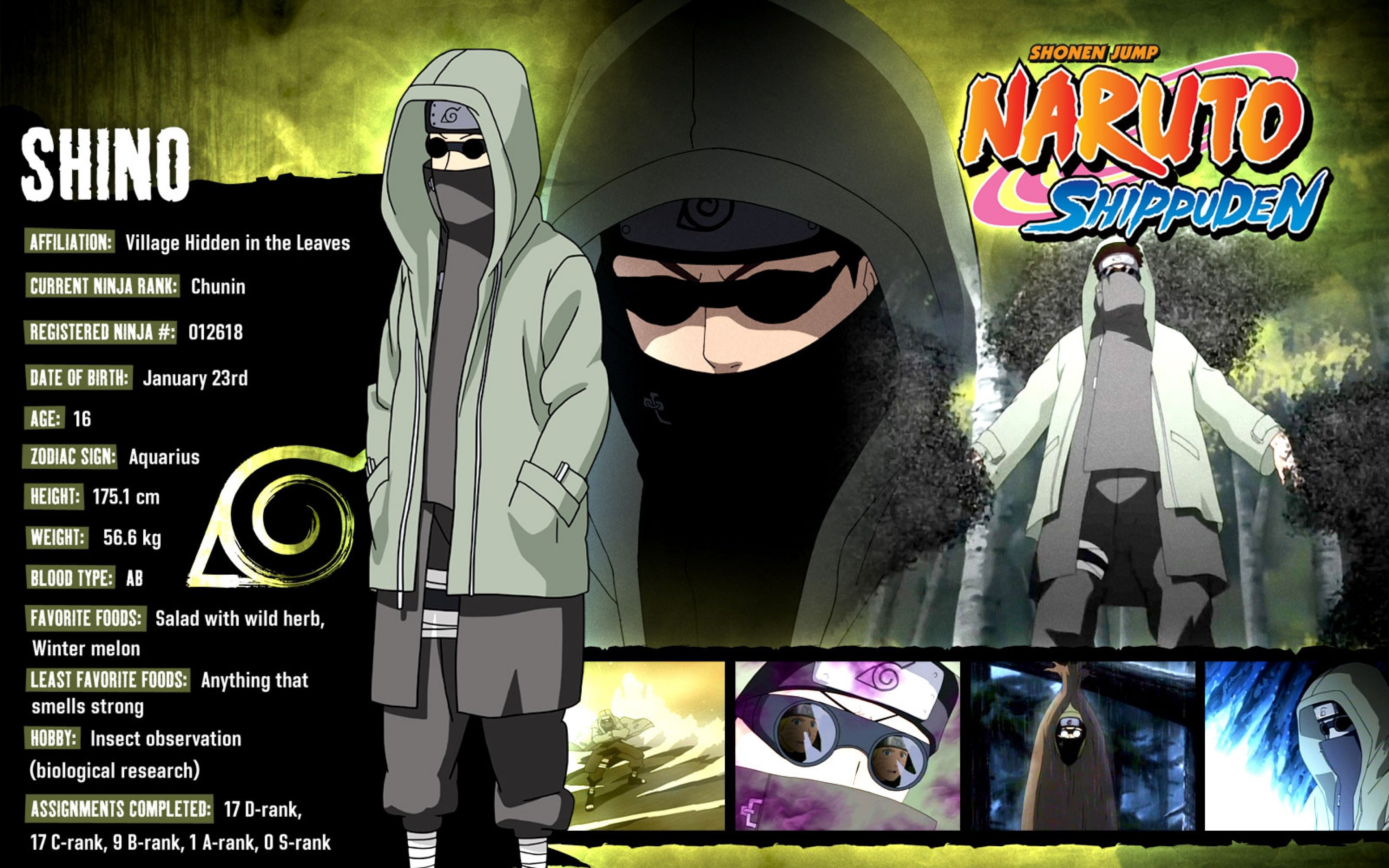 Best Shino Aburame background ID:396153 for High Resolution hd 3840x2400 desktop