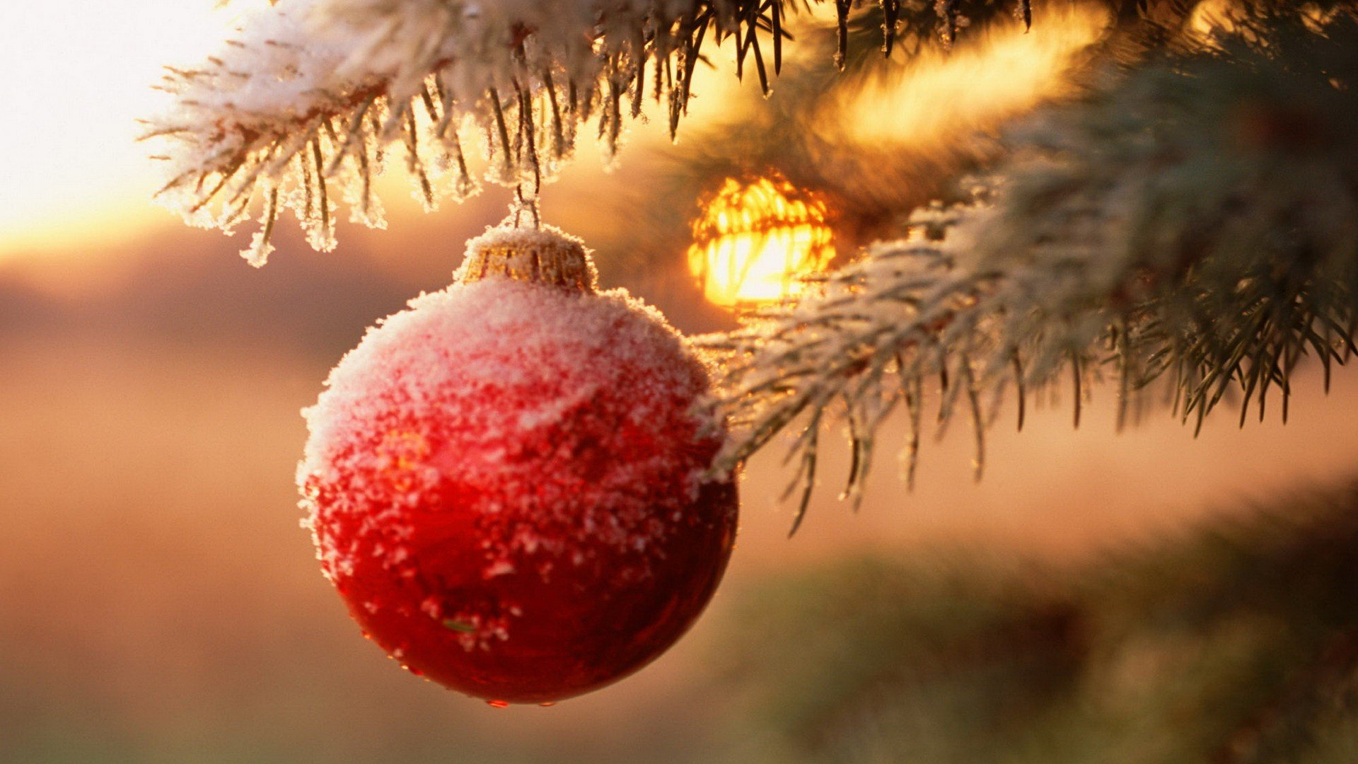 Free Christmas Ornaments Decorations High Quality Wallpaper Id435035 For Full Hd 1920x1080 Pc