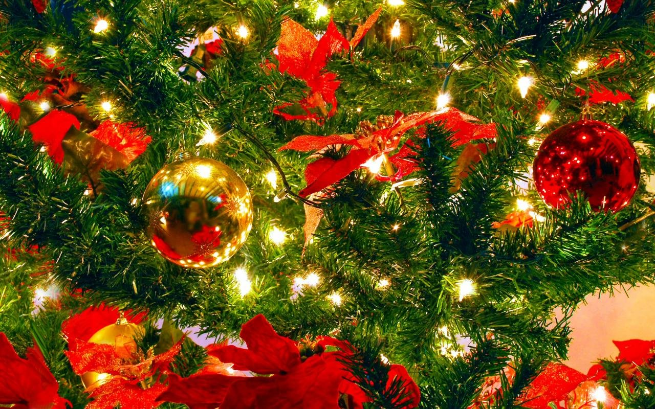 Free Christmas Ornaments Decorations High Quality Wallpaper Id 436226 For Hd 1280x800 Pc