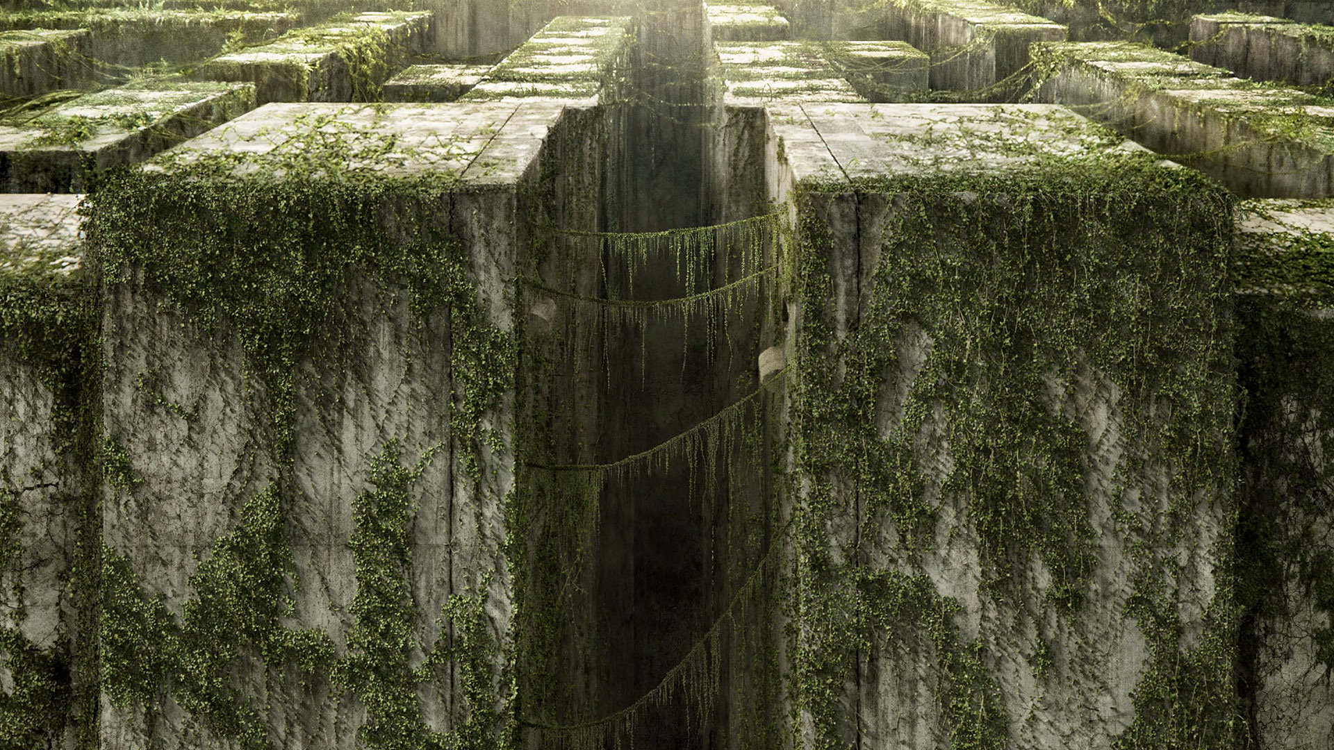 131230 free the maze runner high quality wallpaper id:131230 for
