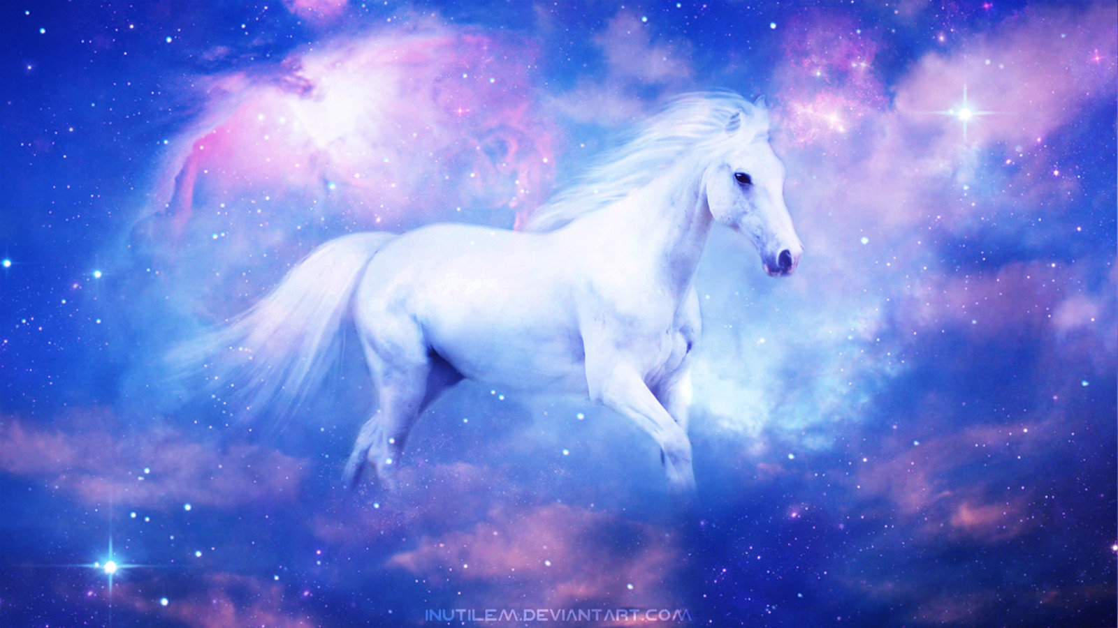 Awesome Horse free background ID:23257 for hd 1600x900 desktop