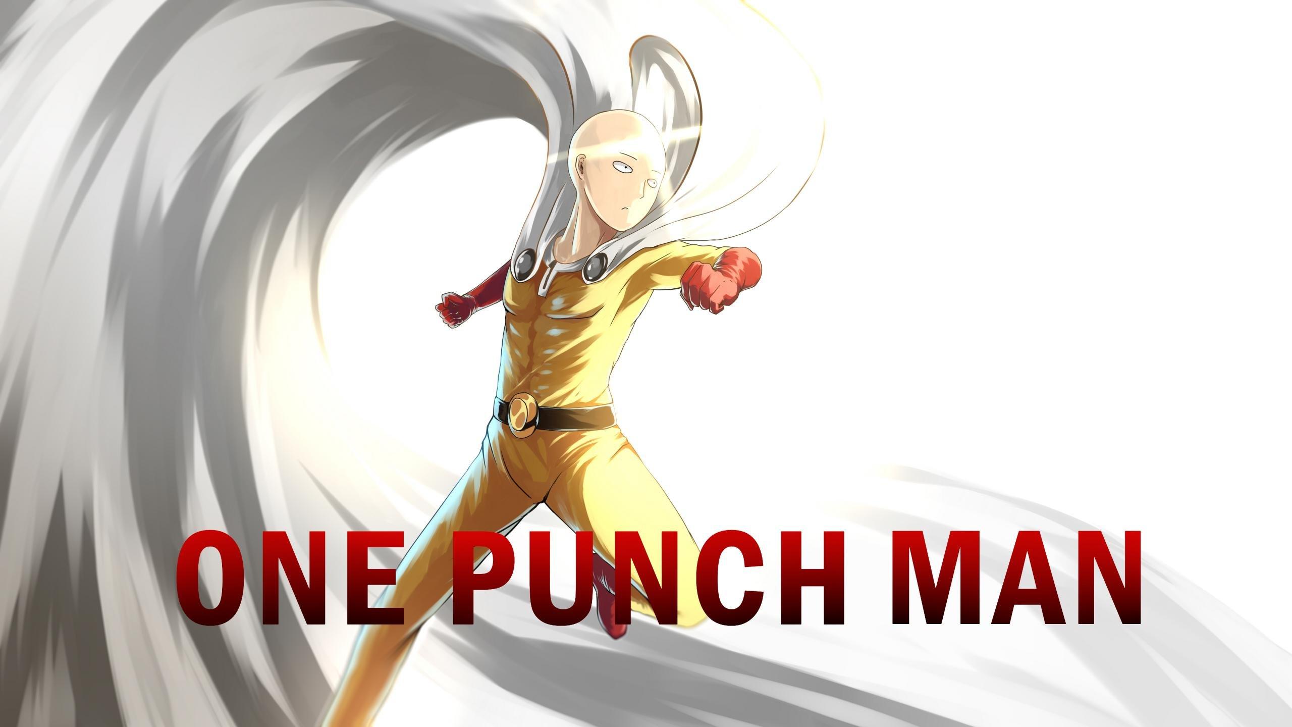 Download Hd Wallpaper Saitama Death Punch Cikimm Com