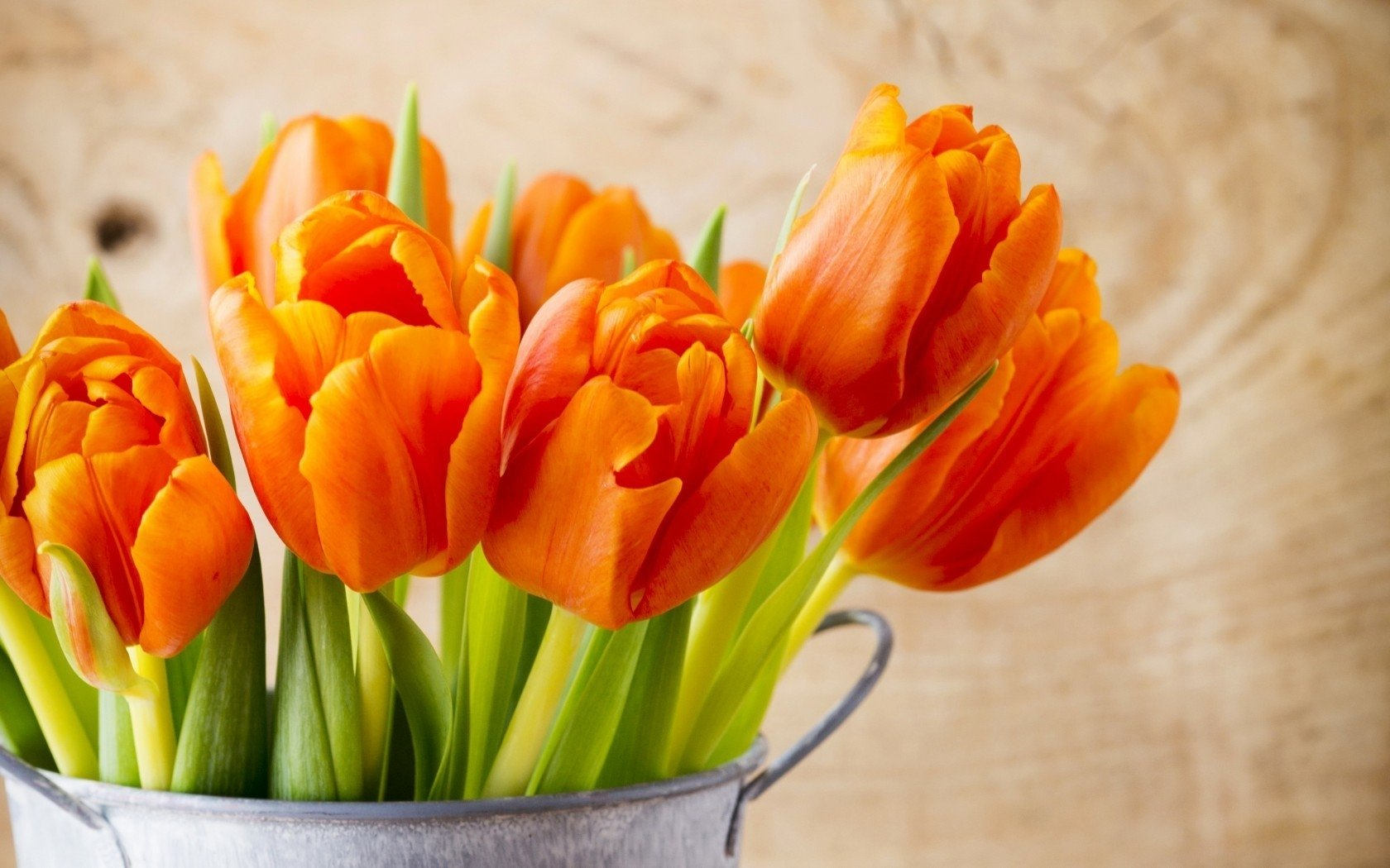 Free download flower bouquet wallpaper id180090 hd 1680x1050 for pc izmirmasajfo