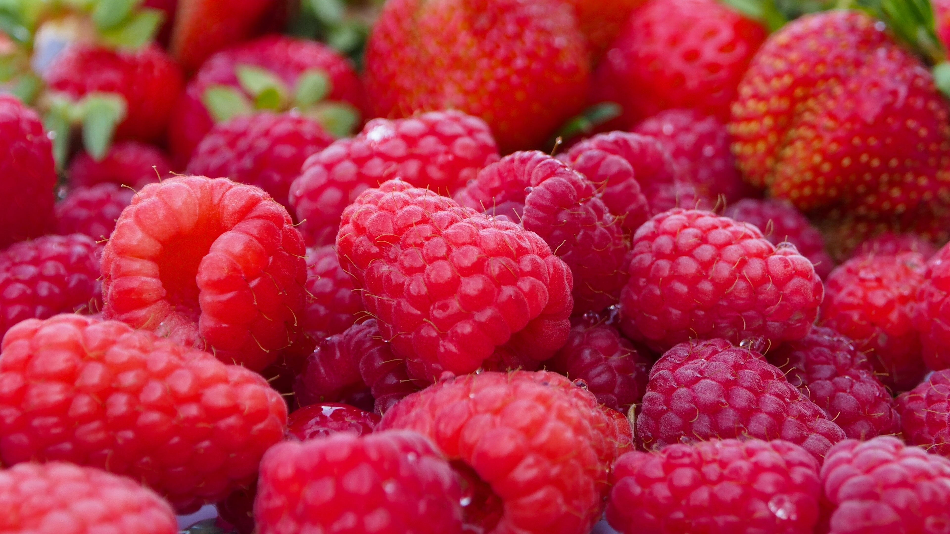 Free Raspberry high quality background ID:50084 for uhd 4k desktop
