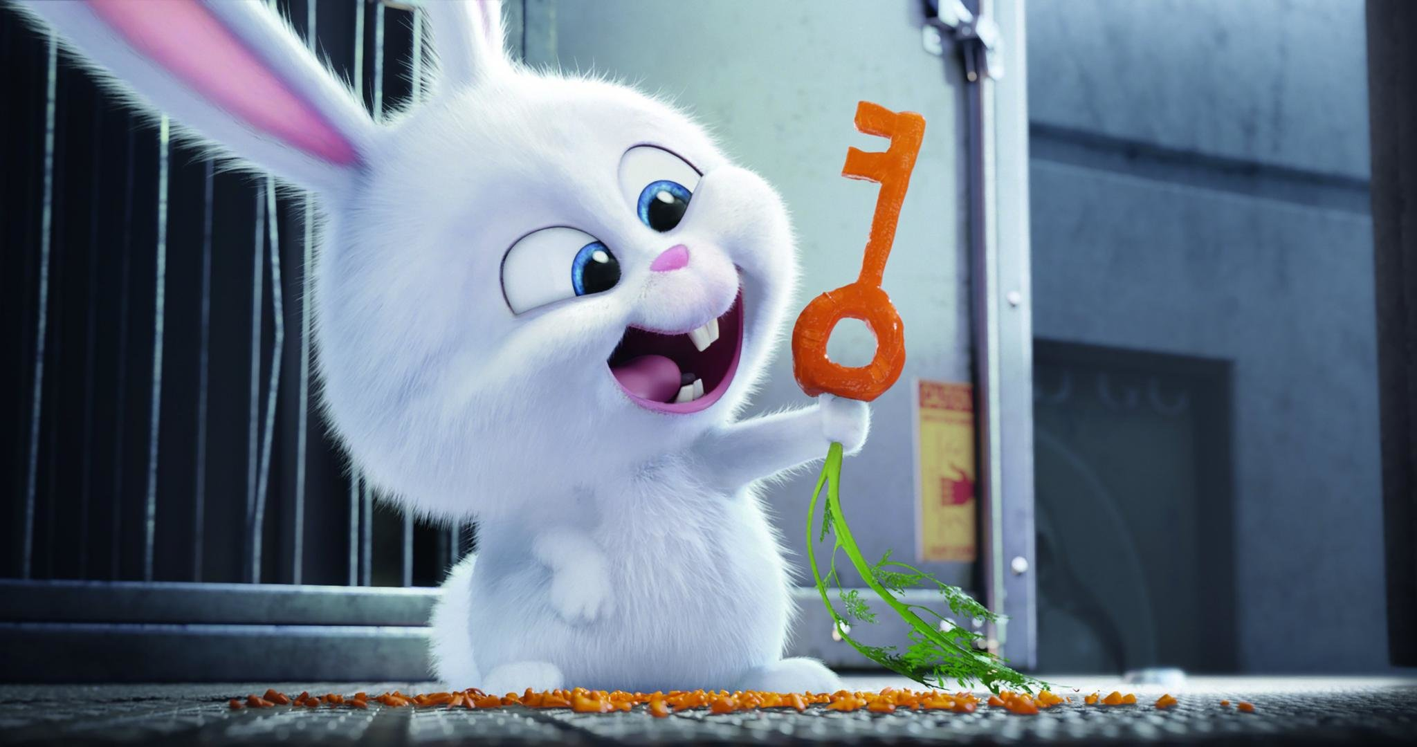 The Secret Life Of Pets Wallpapers Hd For Desktop Backgrounds